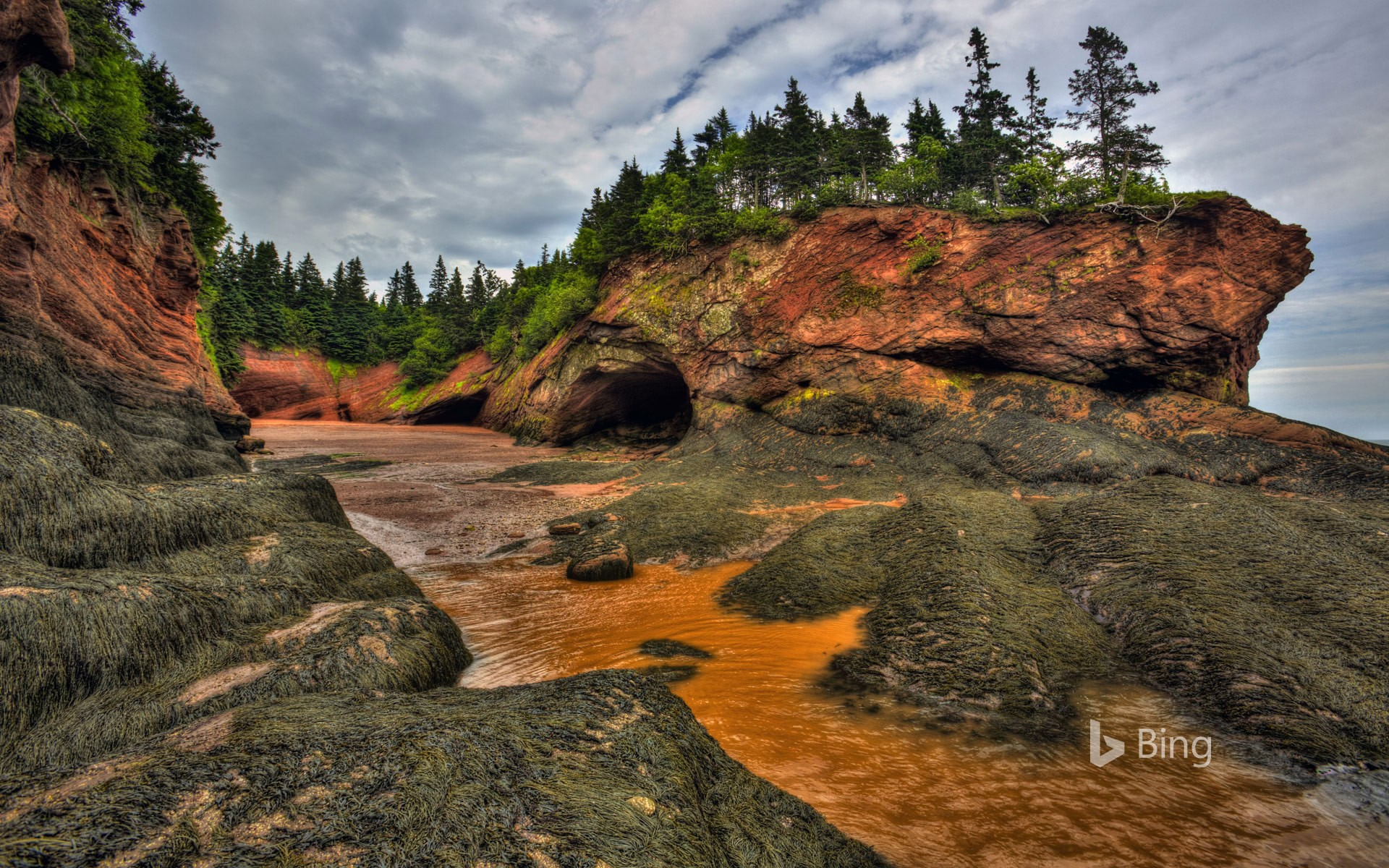 Caves and coastal features at low tide on the Bay of Fundy, near St. Martins, New Brunswick, Canada