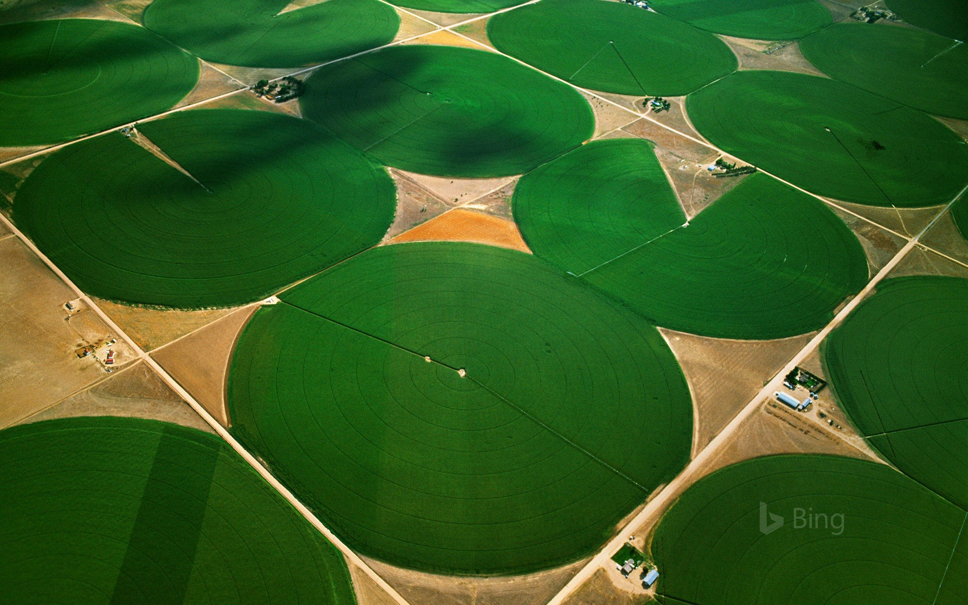 Circular agricultural fields in Morgan County, Colorado