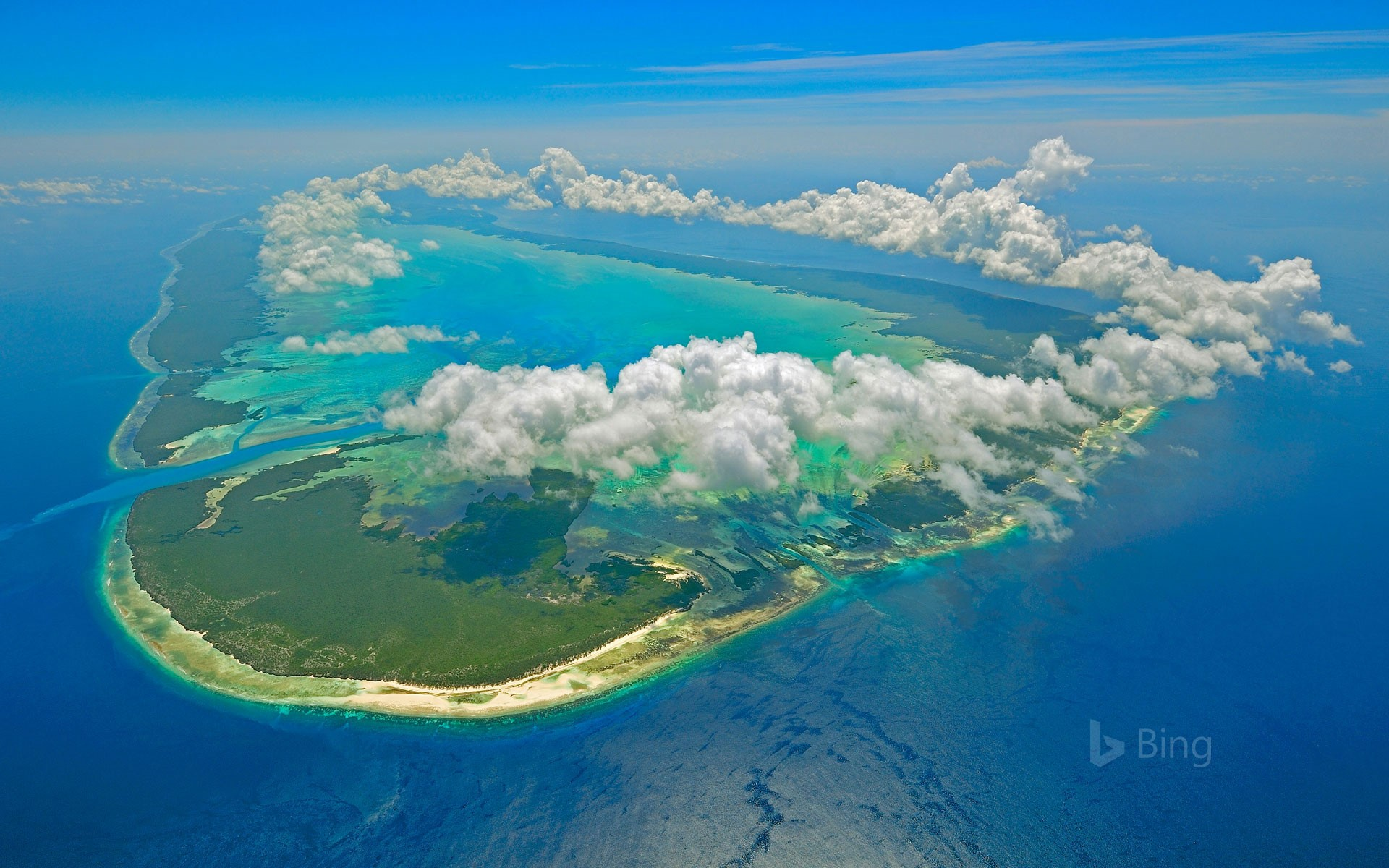 Aldabra of the Seychelles in the Indian Ocean