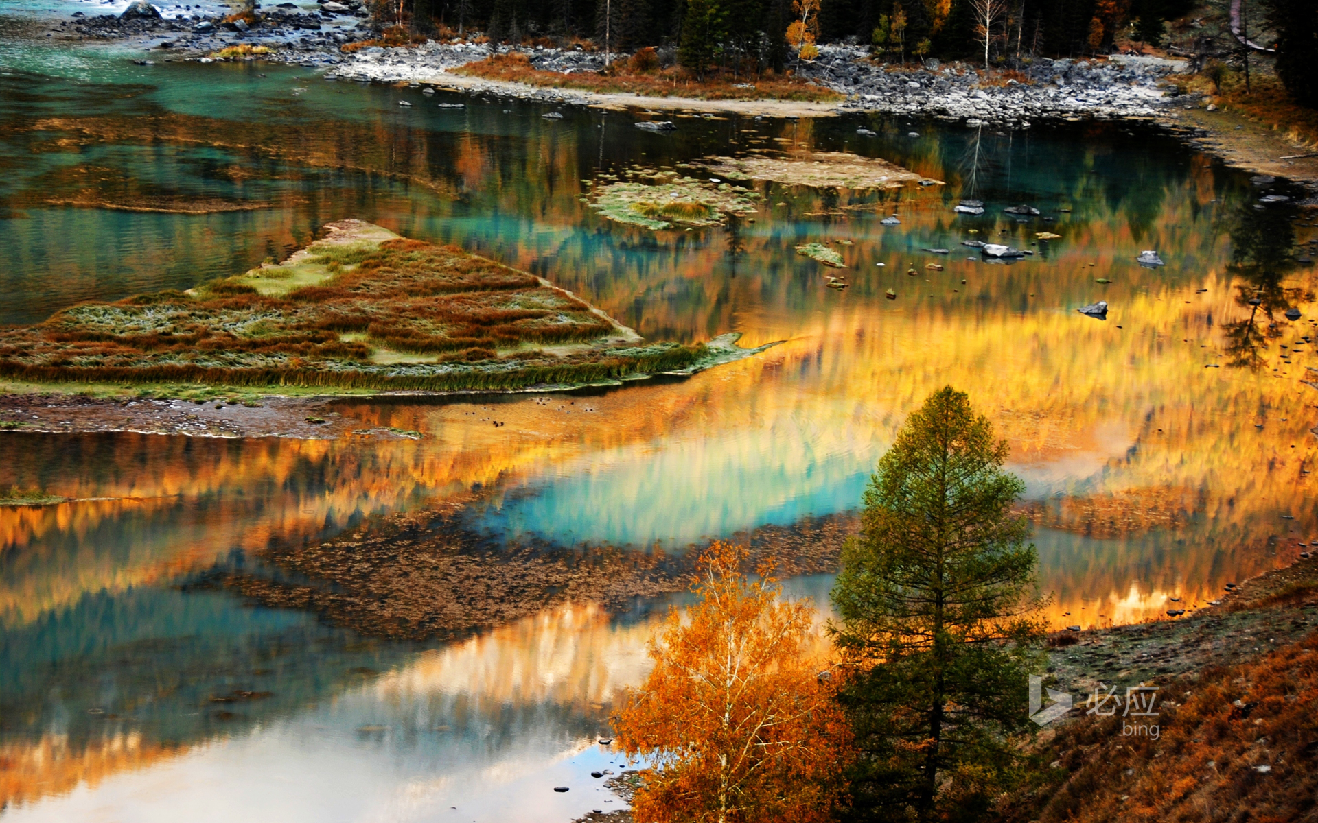 Reflection of colorful trees on lake in autumn day