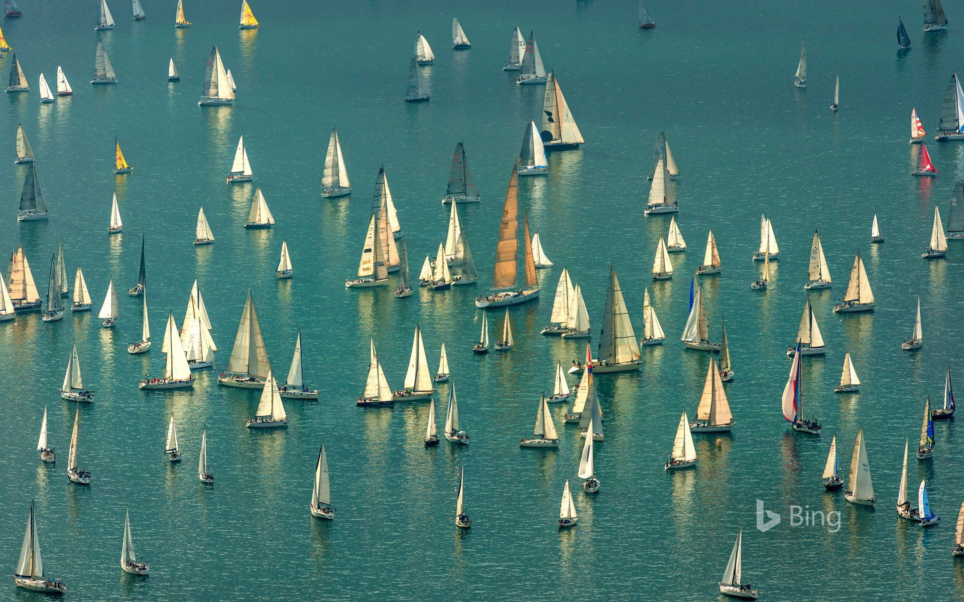 Boats massing for the Barcolana regatta in the Gulf of Trieste, Italy