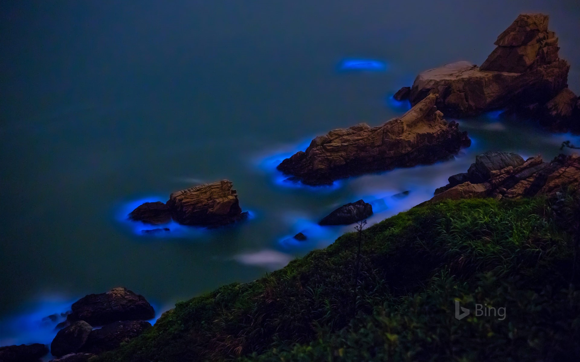 Bioluminescent algae along the shores of the Matsu Islands off the coast of Taiwan (© Wan Ru Chen/Getty Images)