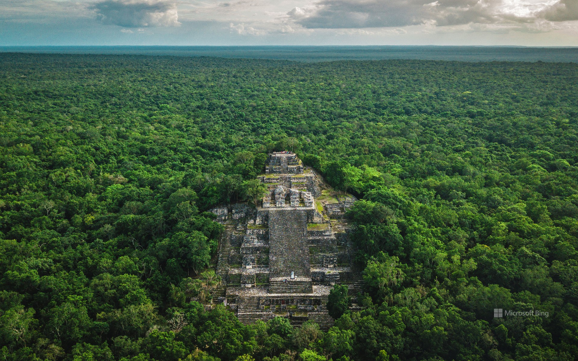 Ruins of the ancient Maya city of Calakmul surrounded by the jungle, Campeche, Mexico