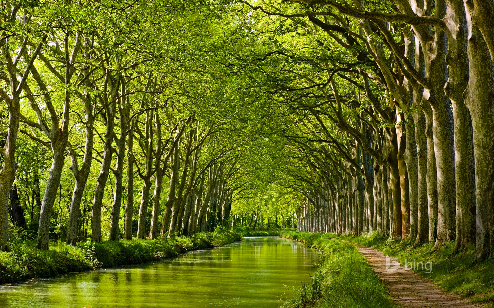 Late Spring On The Canal Du Midi In Toulouse Haute