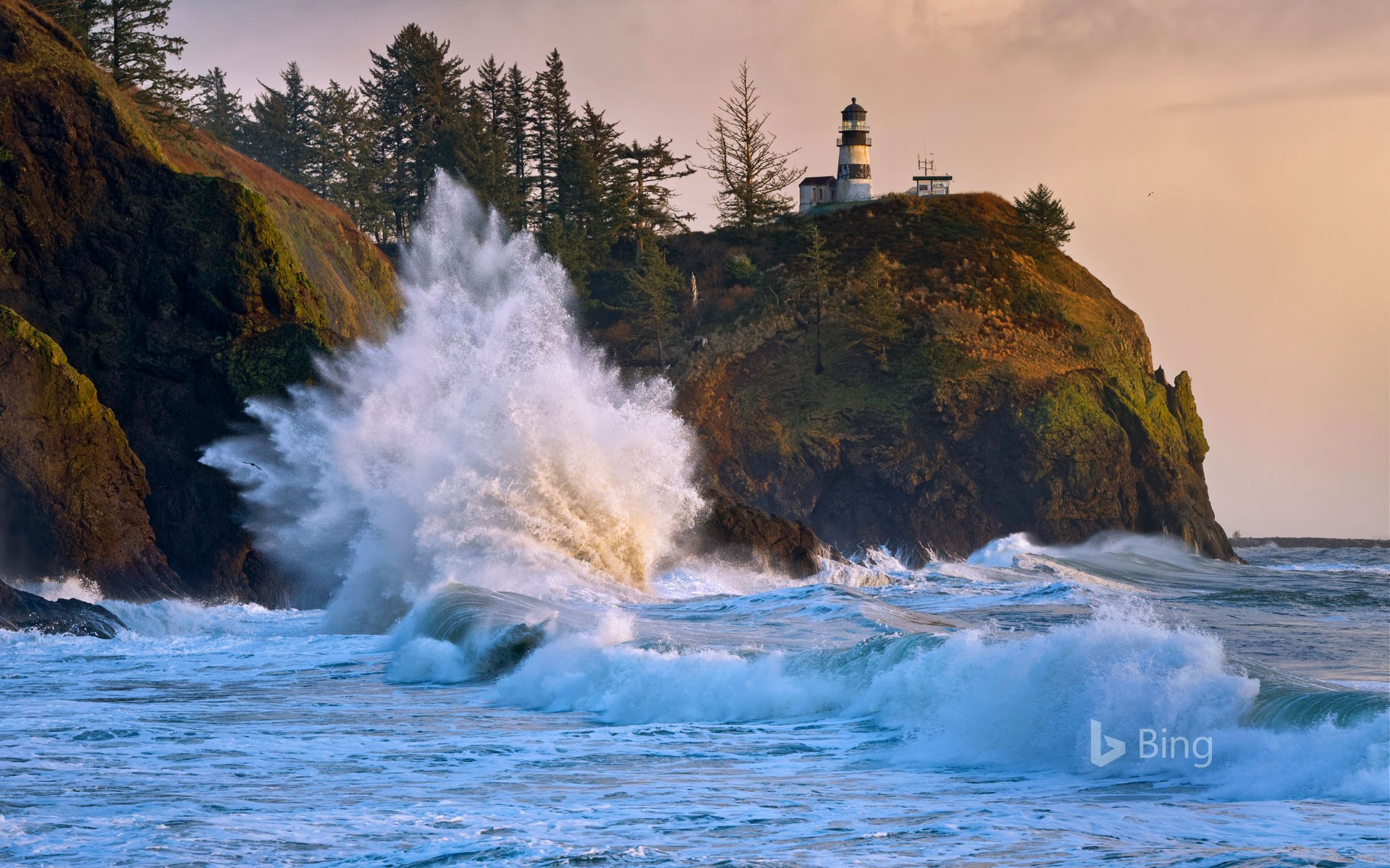 Cape Disappointment Lighthouse in Ilwaco, Washington, for the formation of the modern US Coast Guard