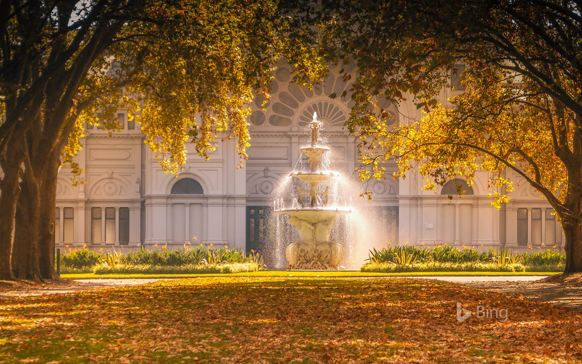 Carlton Gardens fountain and autumn trees catching the sunlight in front of the Royal Exhibition Building, Melbourne