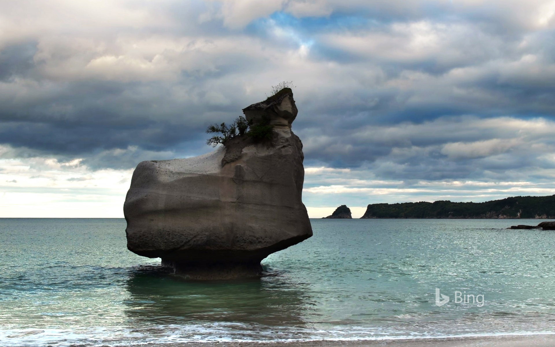 Eroding rock at Cathedral Cove on North Island, New Zealand