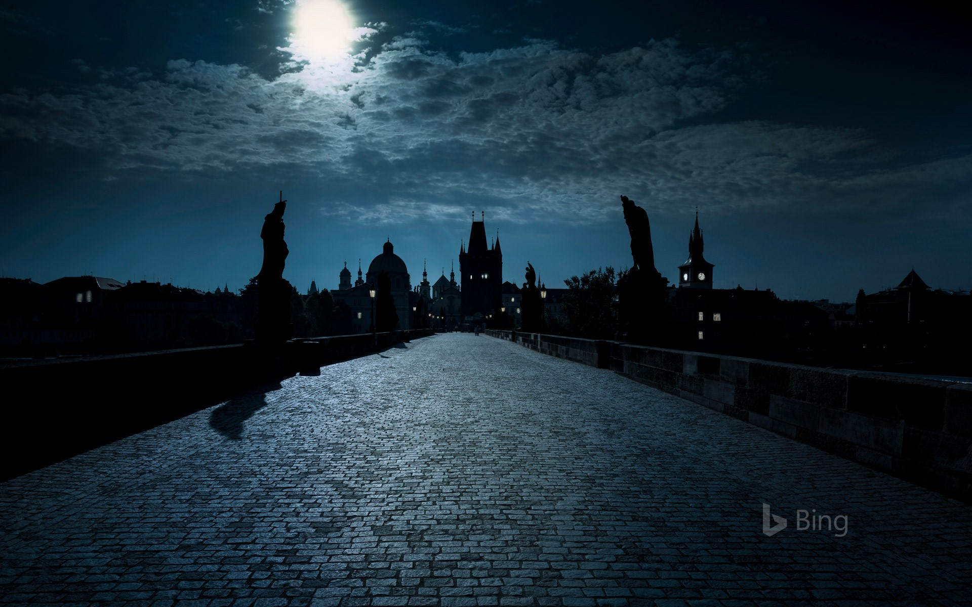 Charles Bridge over the Vltava River in Prague, Czech Republic