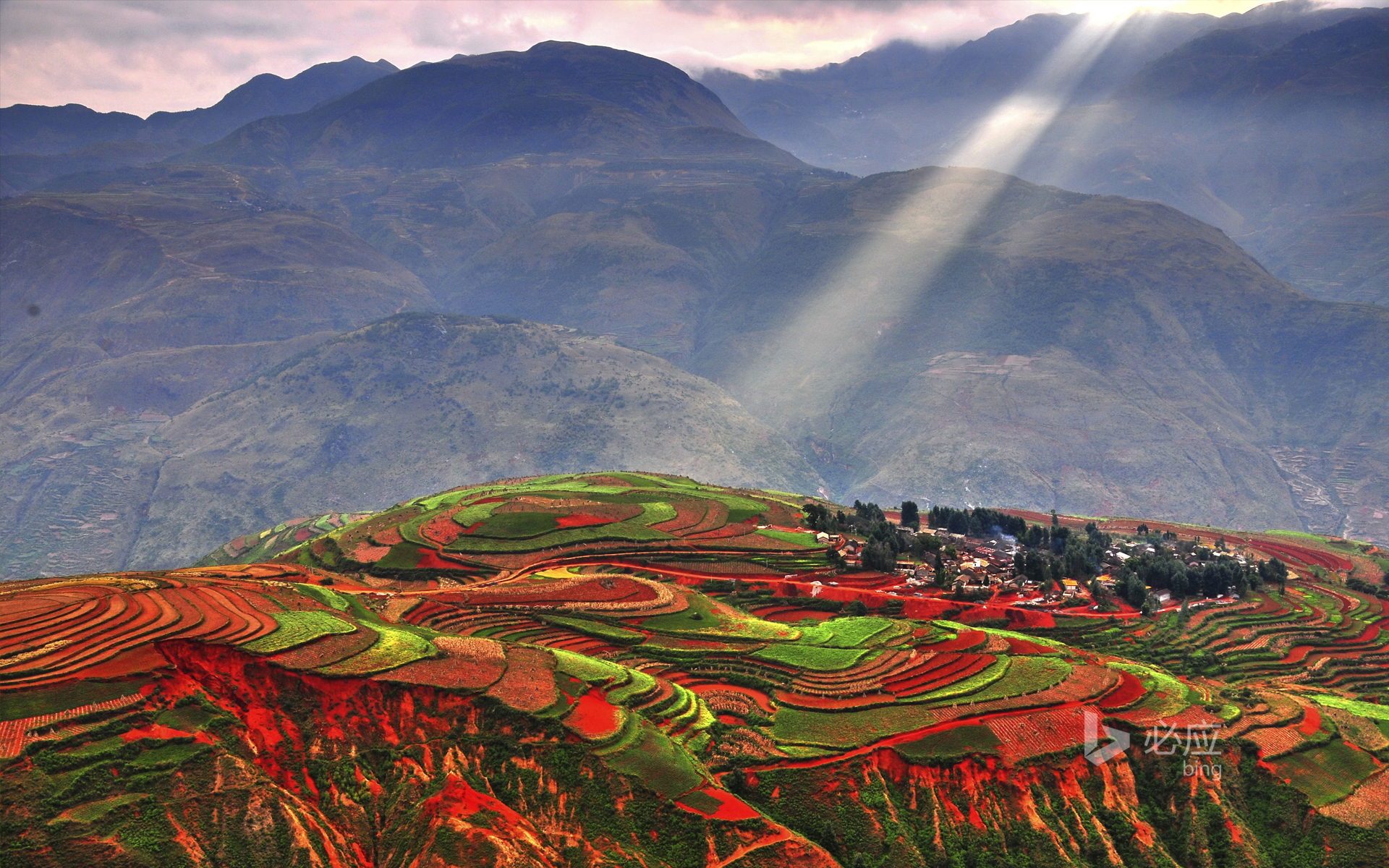 Colorful terraces in Luoxiagou, Yunnan