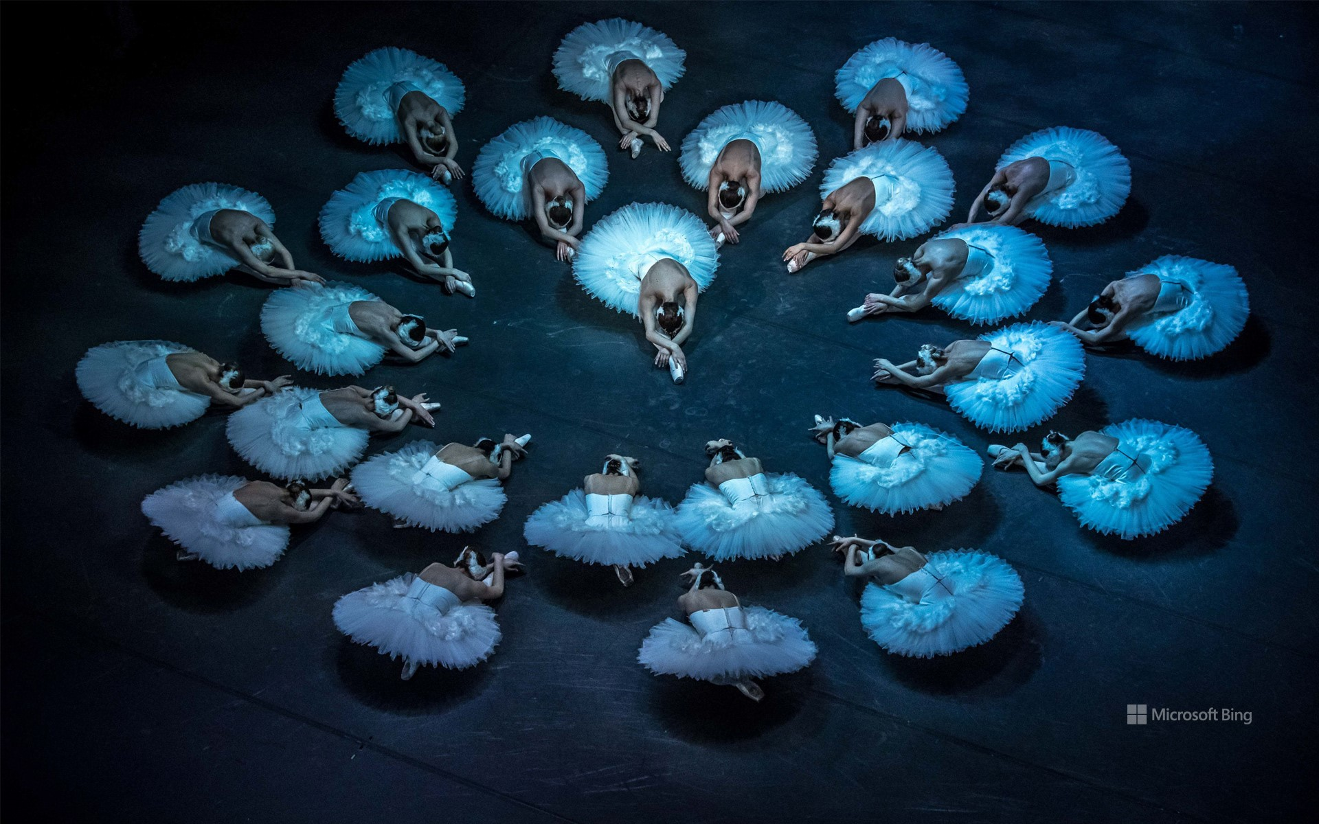 Rehearsal of Swan Lake by the Czech National Ballet in Prague, Czech Republic, March 25, 2019