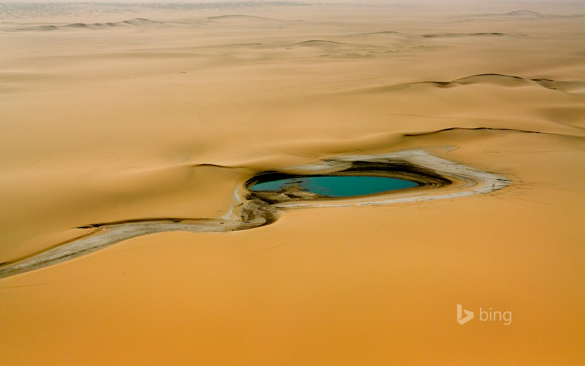 Accumulation of rainwater in the Sahara Desert, east of the Aïr Mountains, Niger