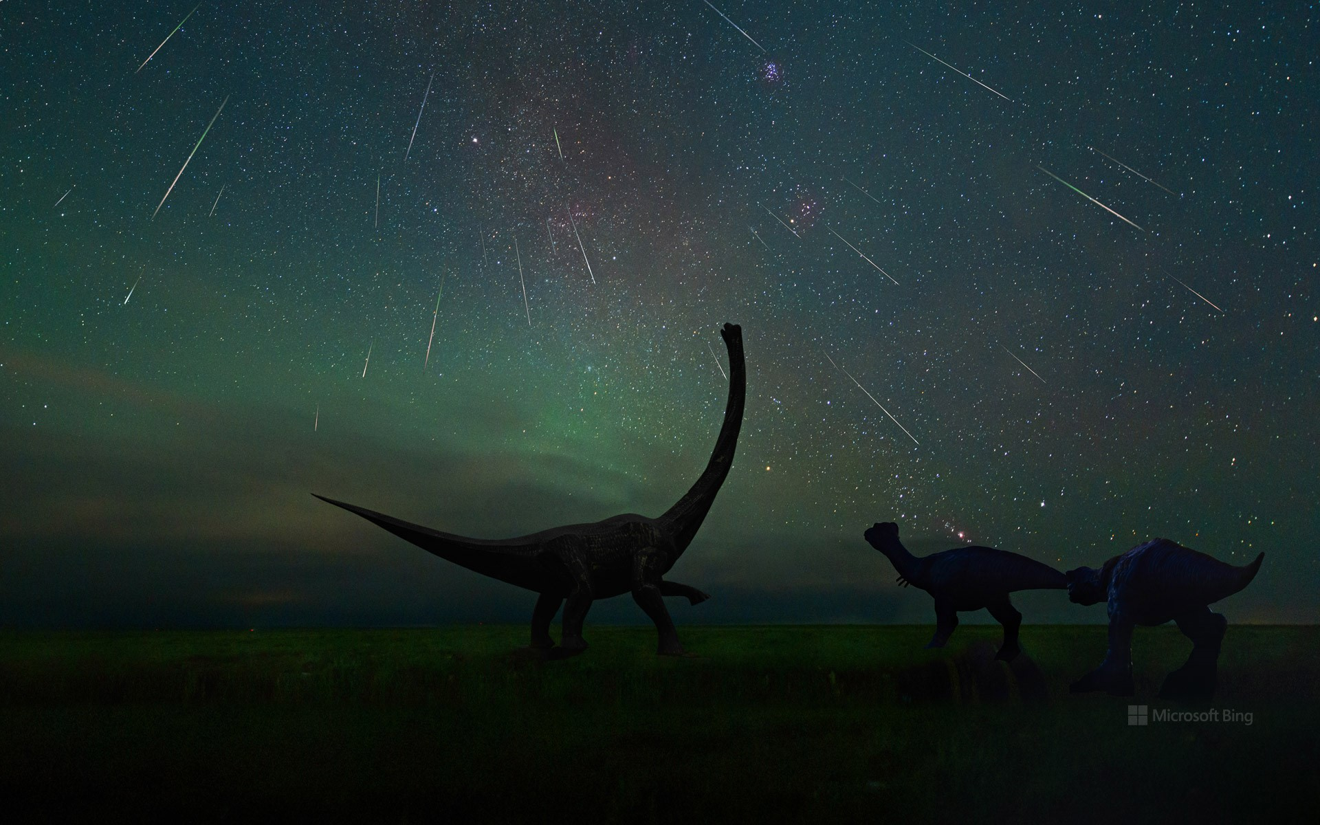 Perseid meteor shower photographed at the Dinosaur Museum of Erenhot in Inner Mongolia, China