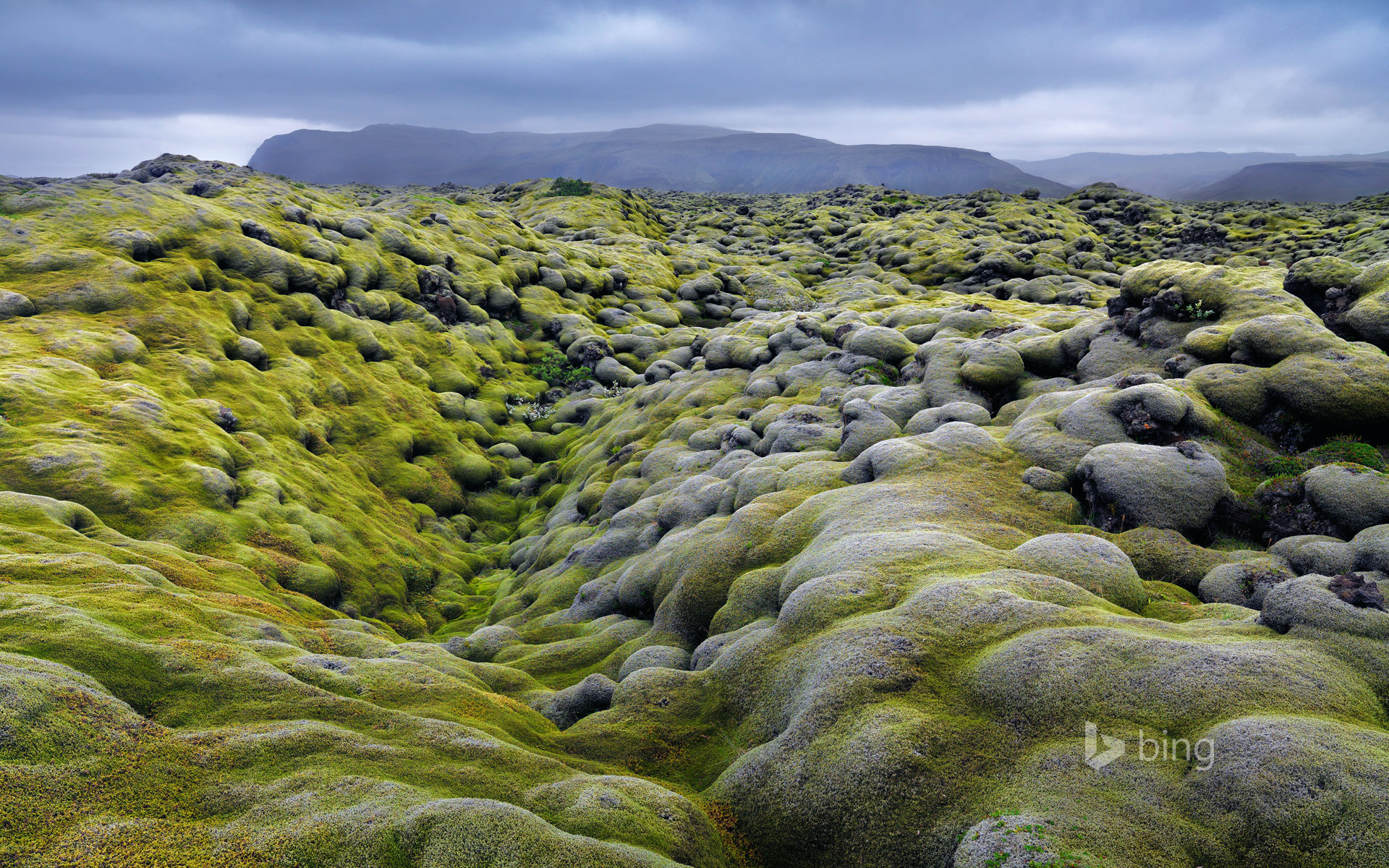 Eldhraun lava field in the Laki fissure system, Iceland