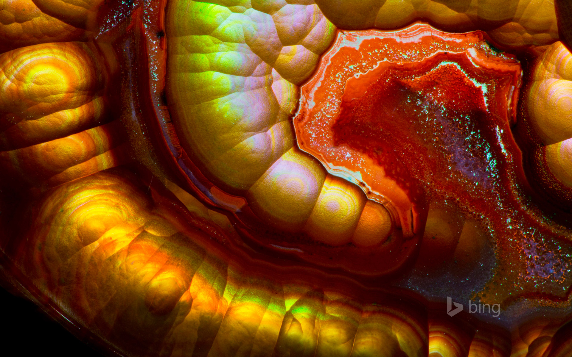 Close-up view of a fire agate gemstone