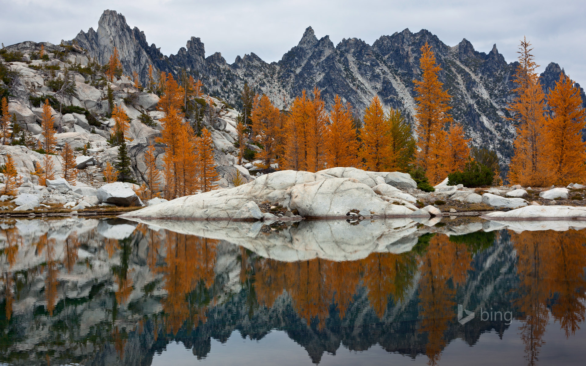 Golden larches and Prusik Peak reflected in Troll Sink Tarn, Upper Enchantments, Alpine Lakes Wilderness, Washington