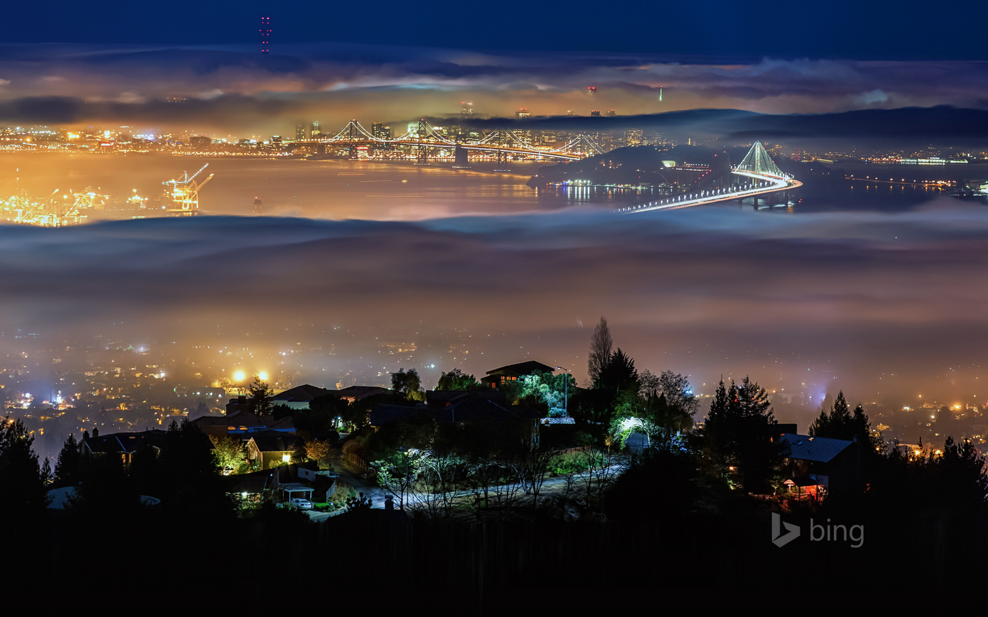 View from Grizzly Peak in the Berkeley Hills above Berkeley, California, USA