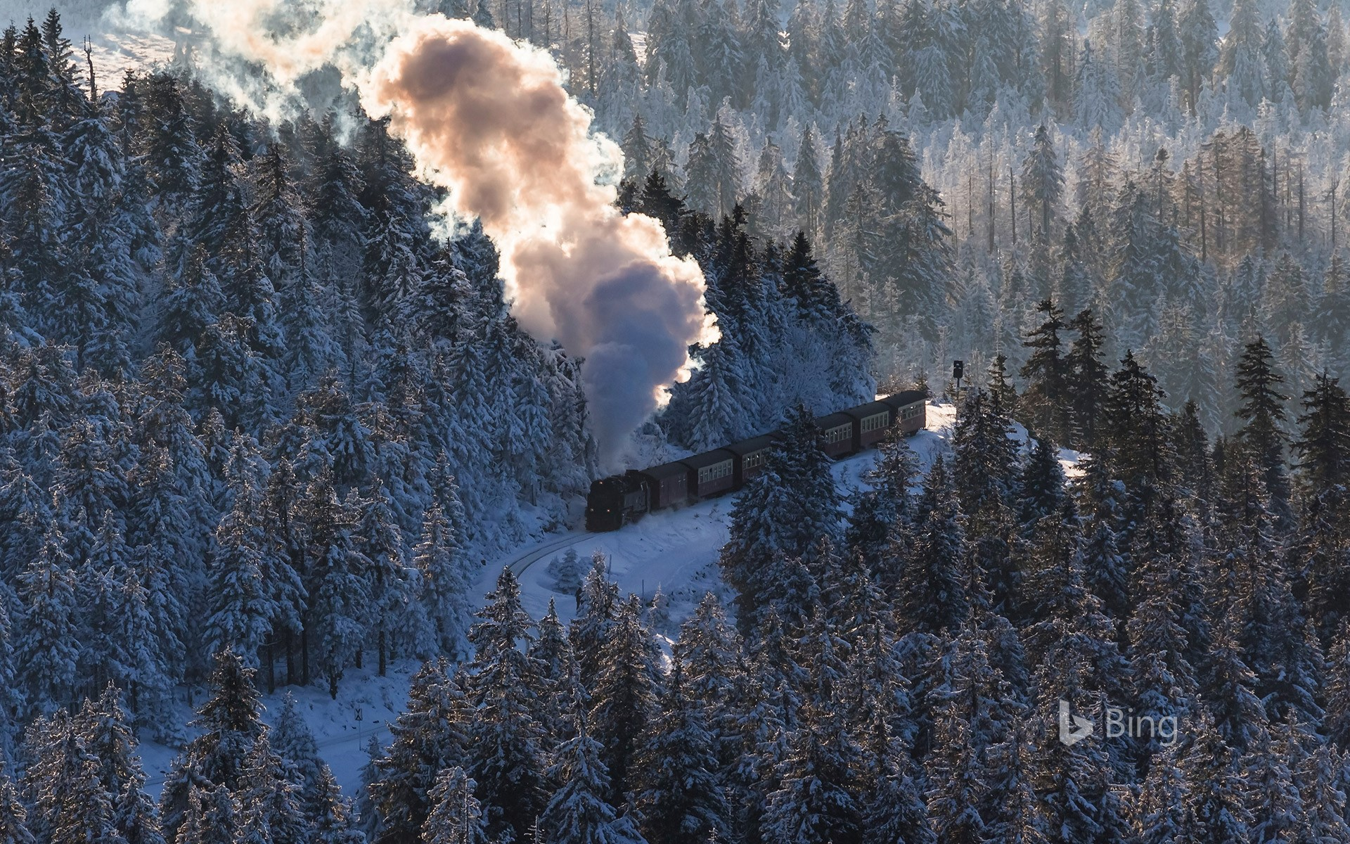 Harz Narrow Gauge Railway, Brocken, Harz National Park, Saxony-Anhalt, Germany