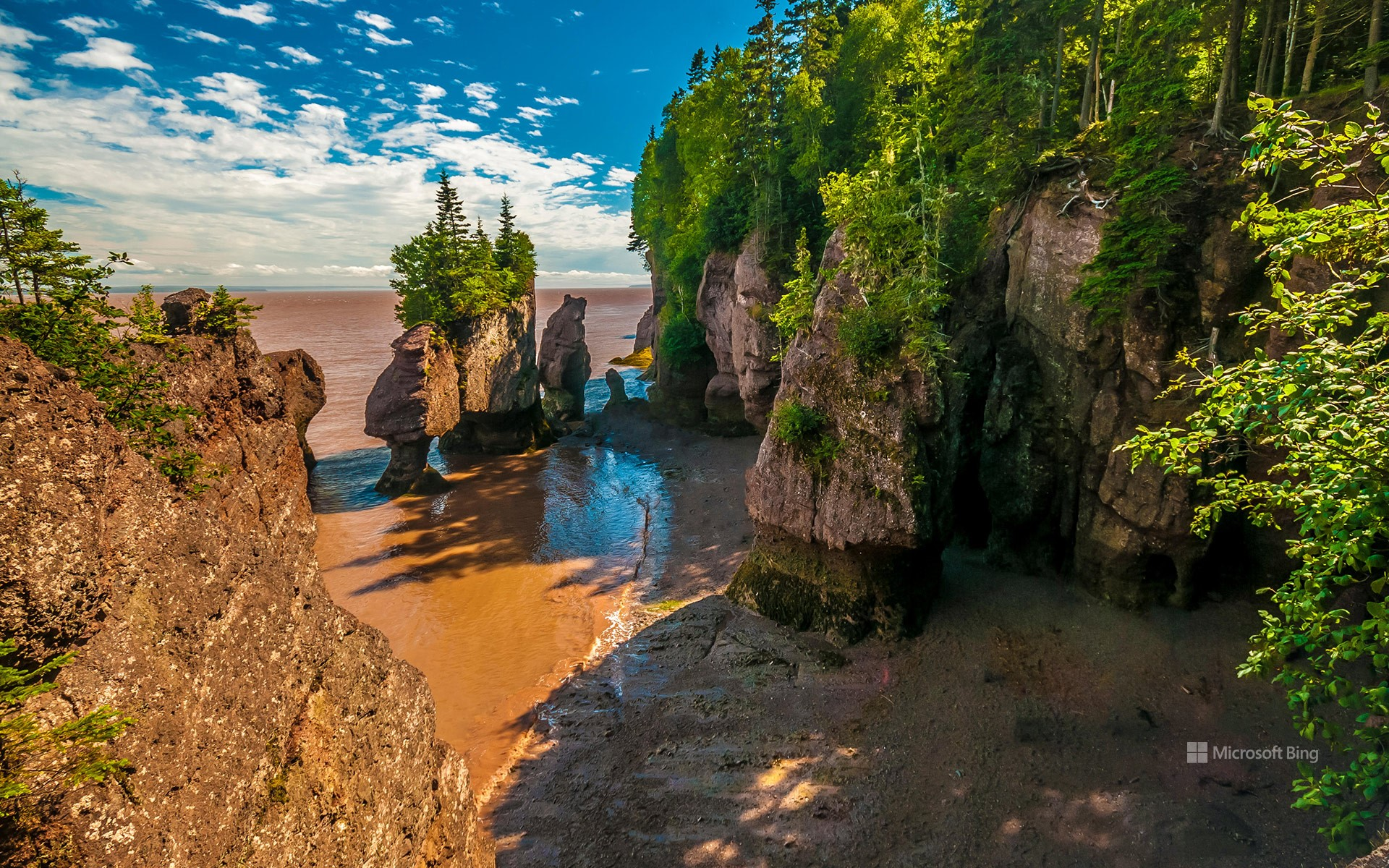 Geological site of Hopewell Rocks in New Brunswick