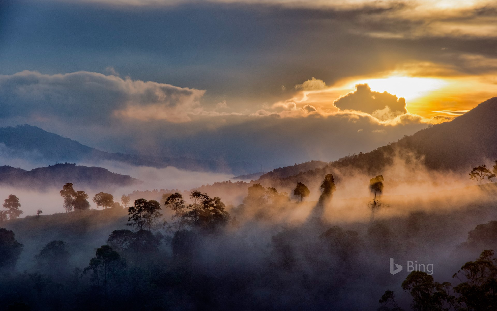 Mist over the forests of Idukki, Western Ghats, Kerala, India