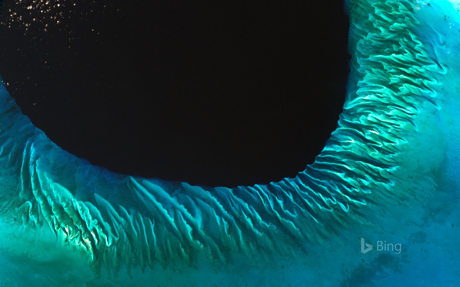 Satellite image of sand and seaweed in the Bahamas
