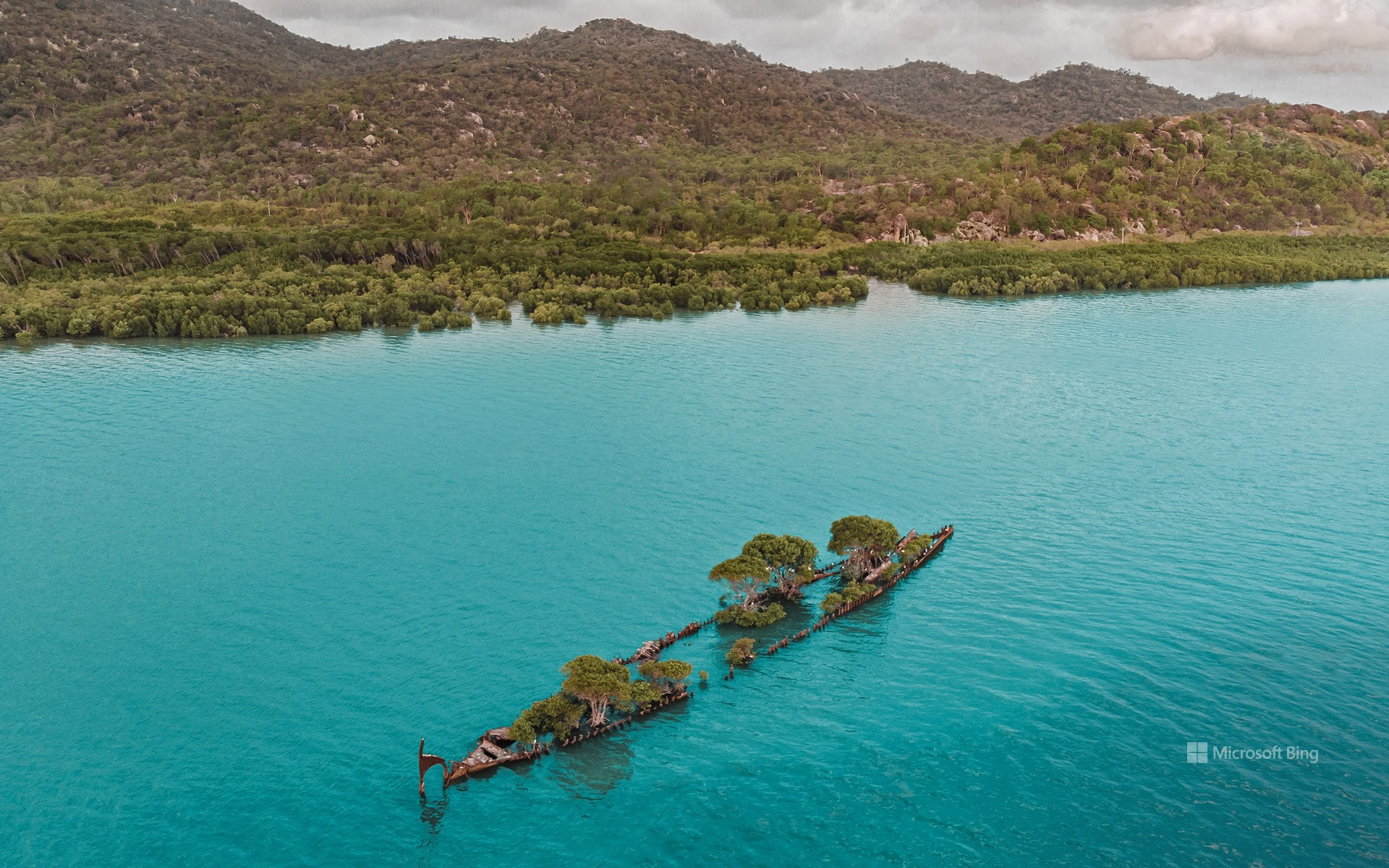 Aerial view of the 'City of Adelaide' shipwreck with trees growing on it, Magnetic Island, Queensland, Australia