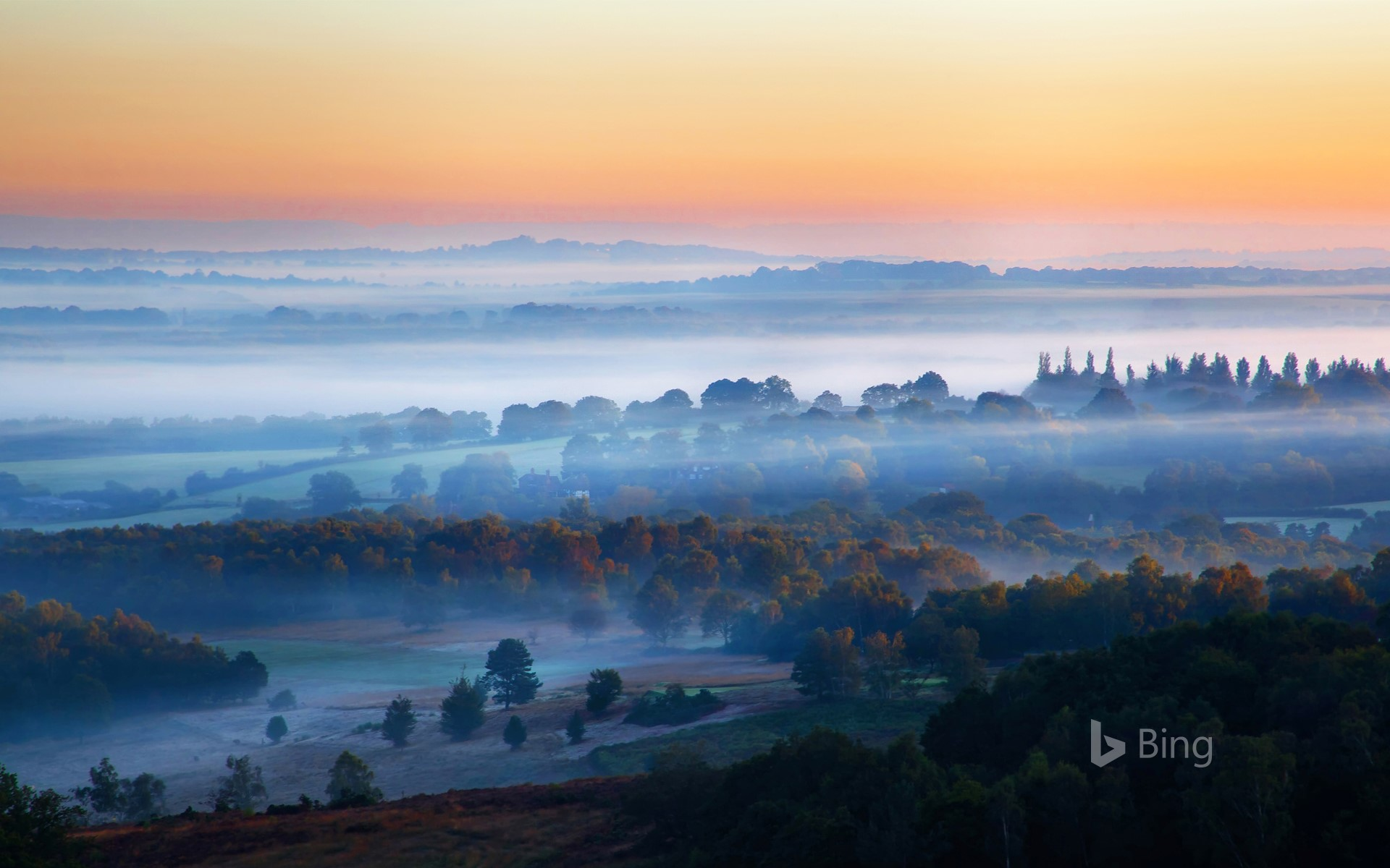 Misty sunrise in Ashdown Forest, East Sussex
