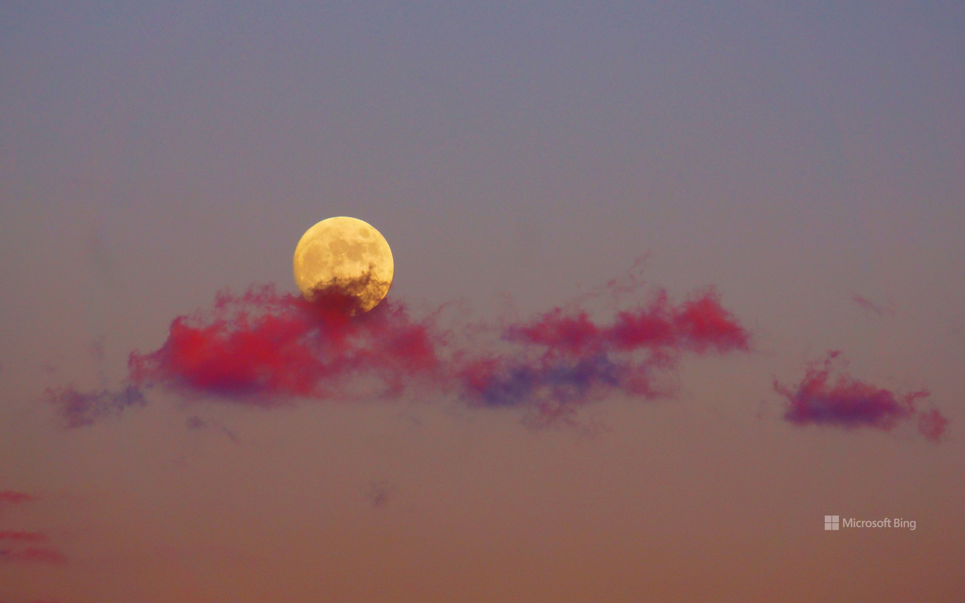 """""""The moon that shines in the sunset"""""""
