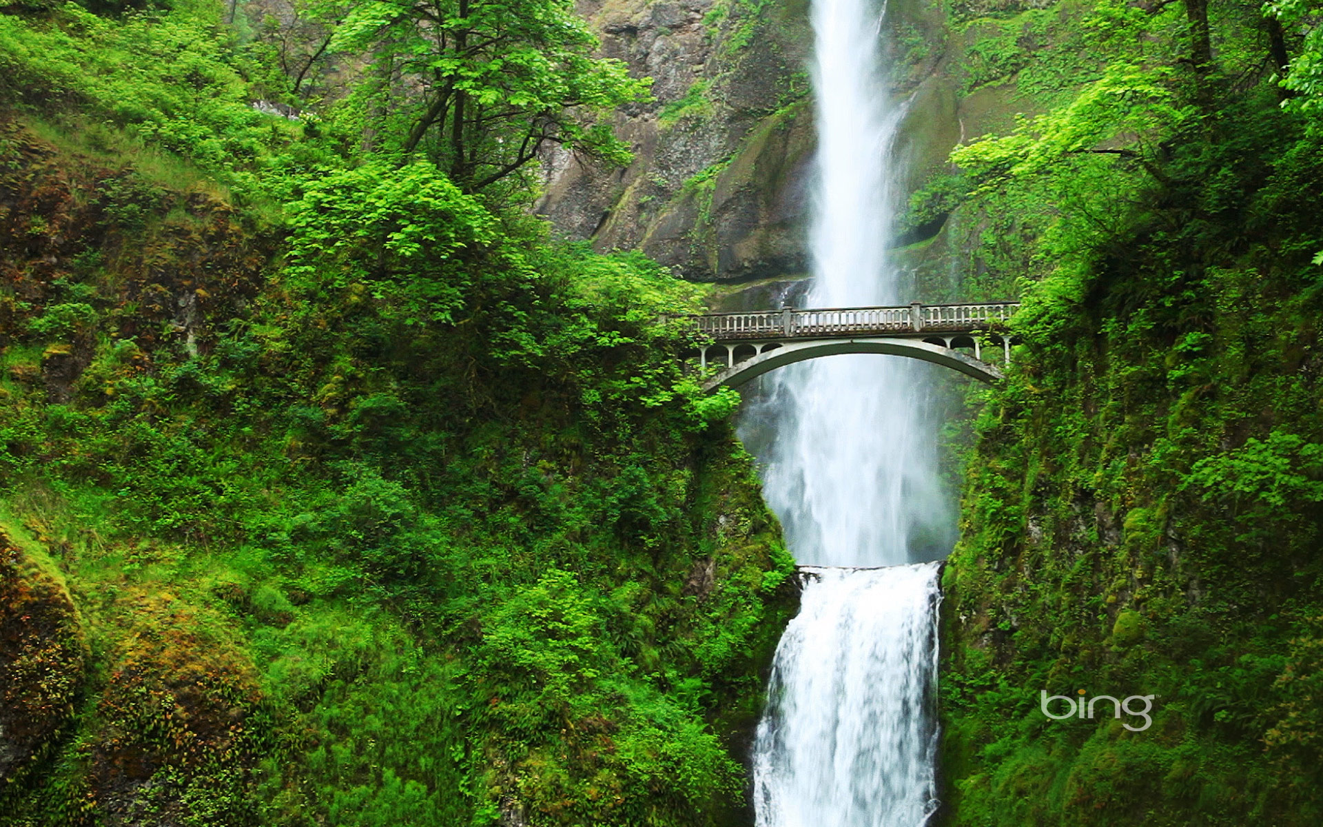 Multnomah Falls and Benson Bridge, Oregon