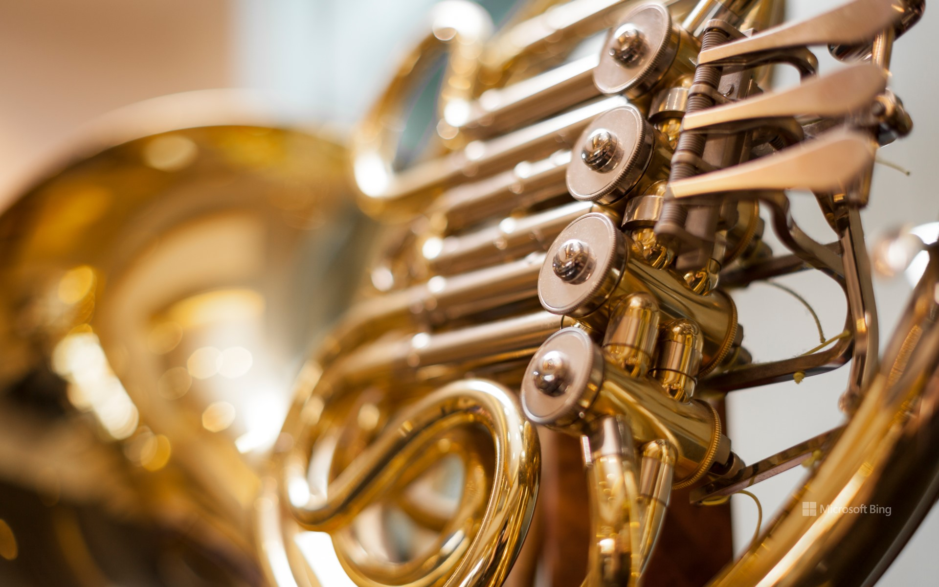 Close-up of a French horn