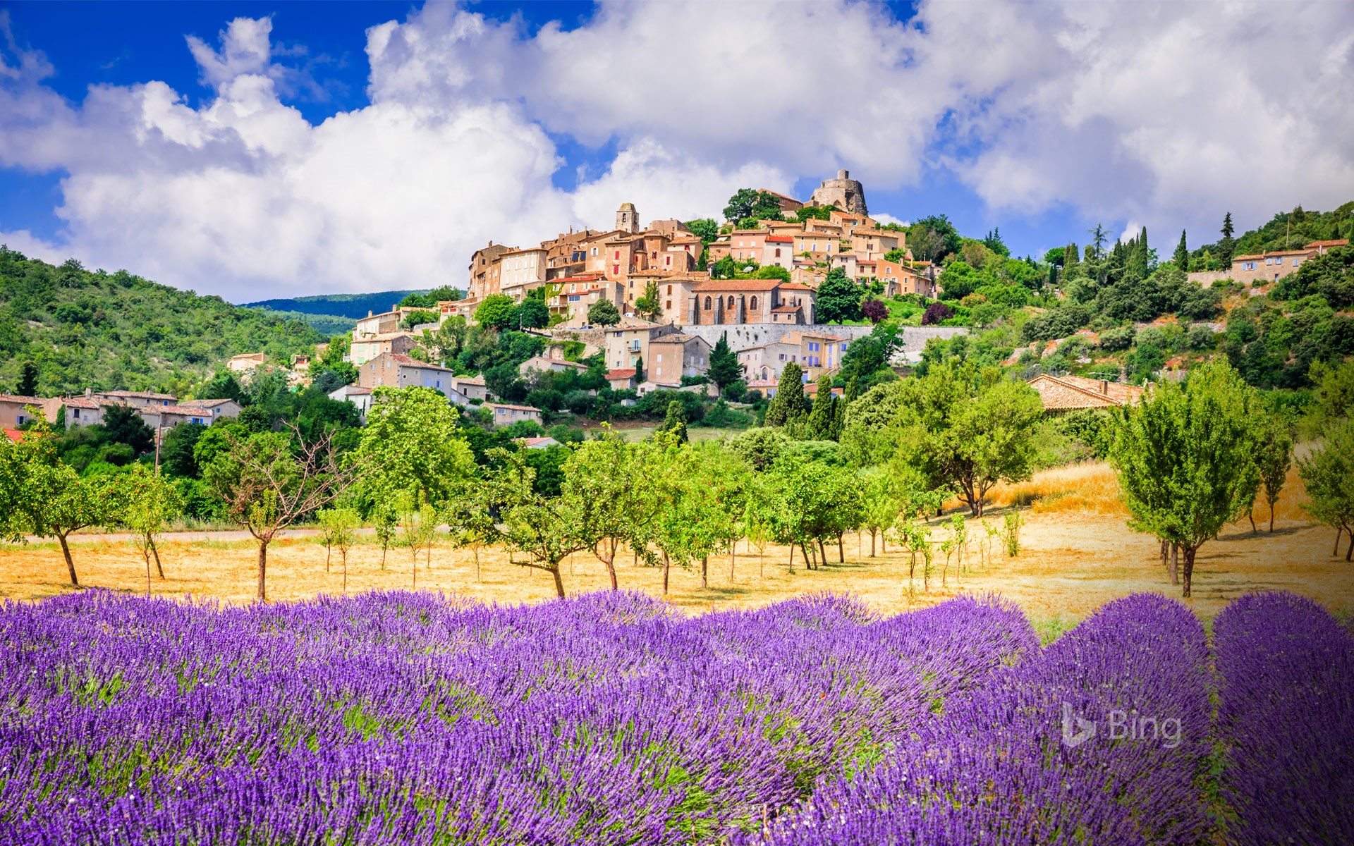 Village of Simiane-la-Rotonde and lavender field, in Provence