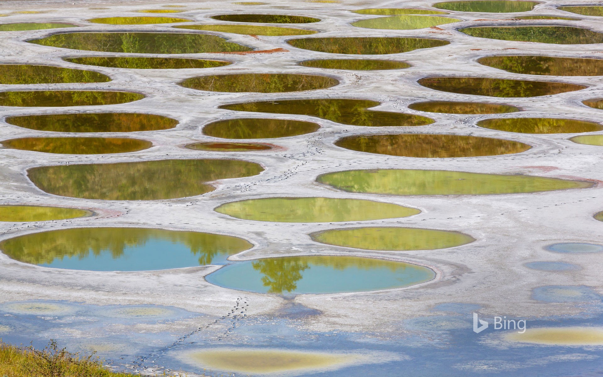 Spotted Lake in the Okanagan region of British Columbia, Canada
