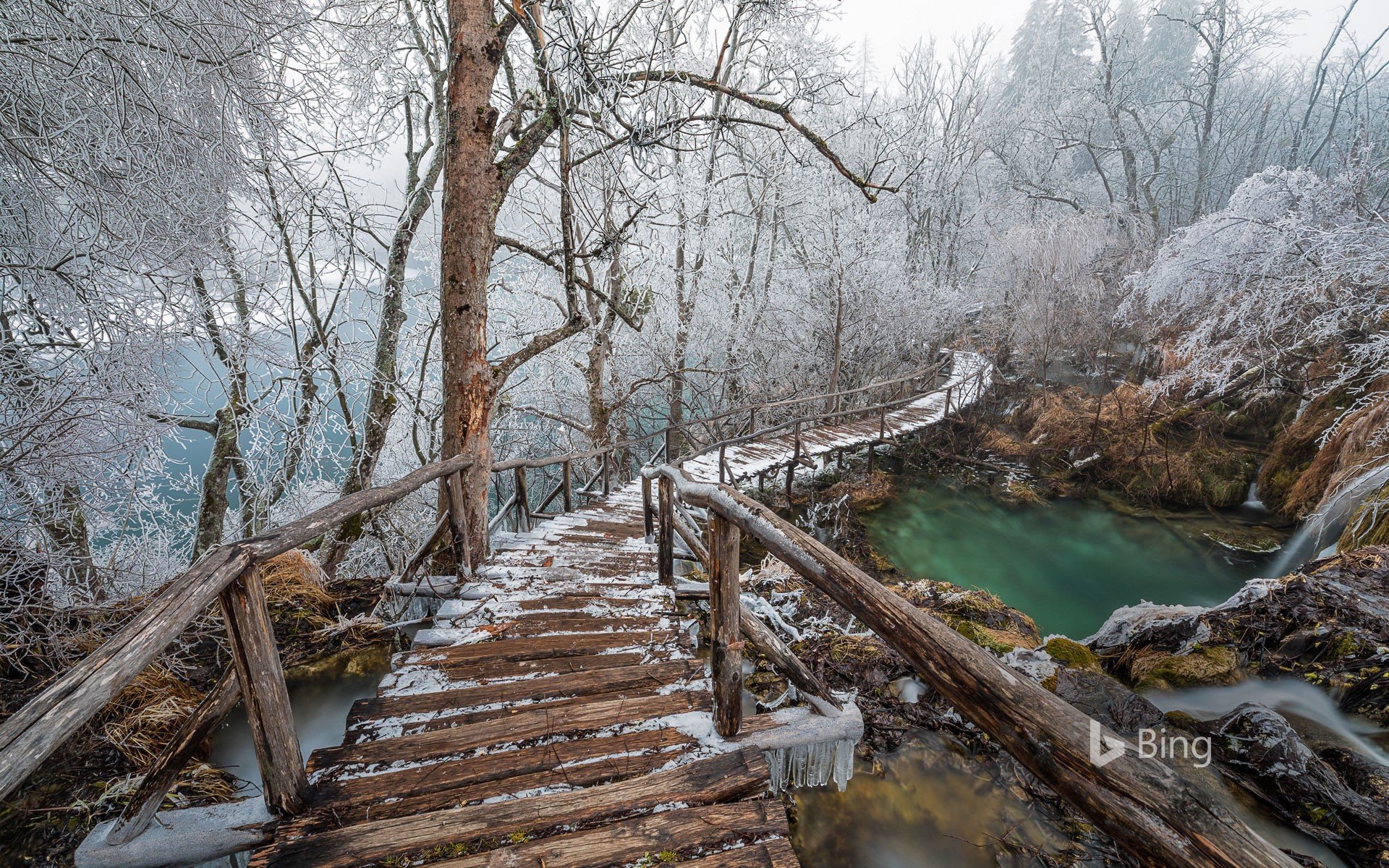 Elevated path in Plitvice Lakes National Park, Croatia