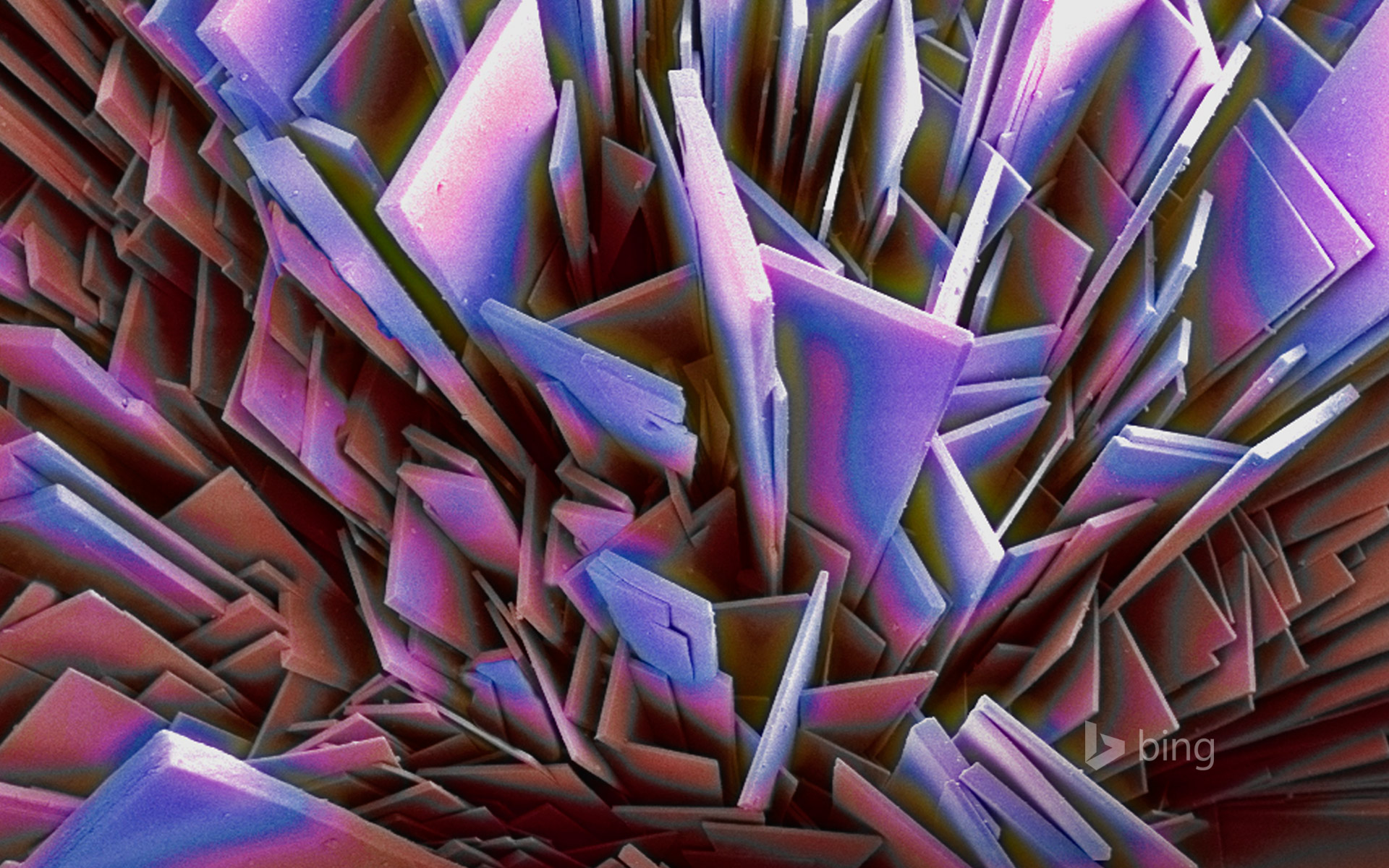 Magnification of phosphate crystals