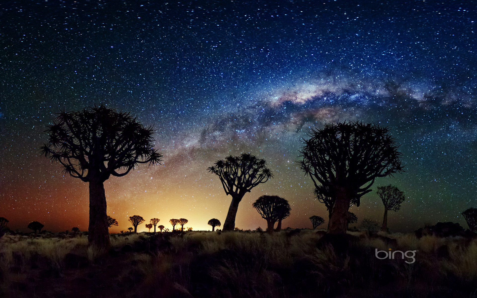 The Milky Way stretches over the Quiver Tree Forest, Namibia
