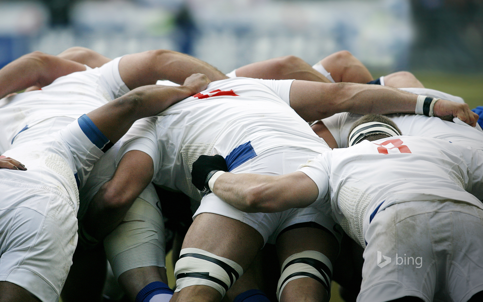 Rugby union players battle for the ball in a scrum