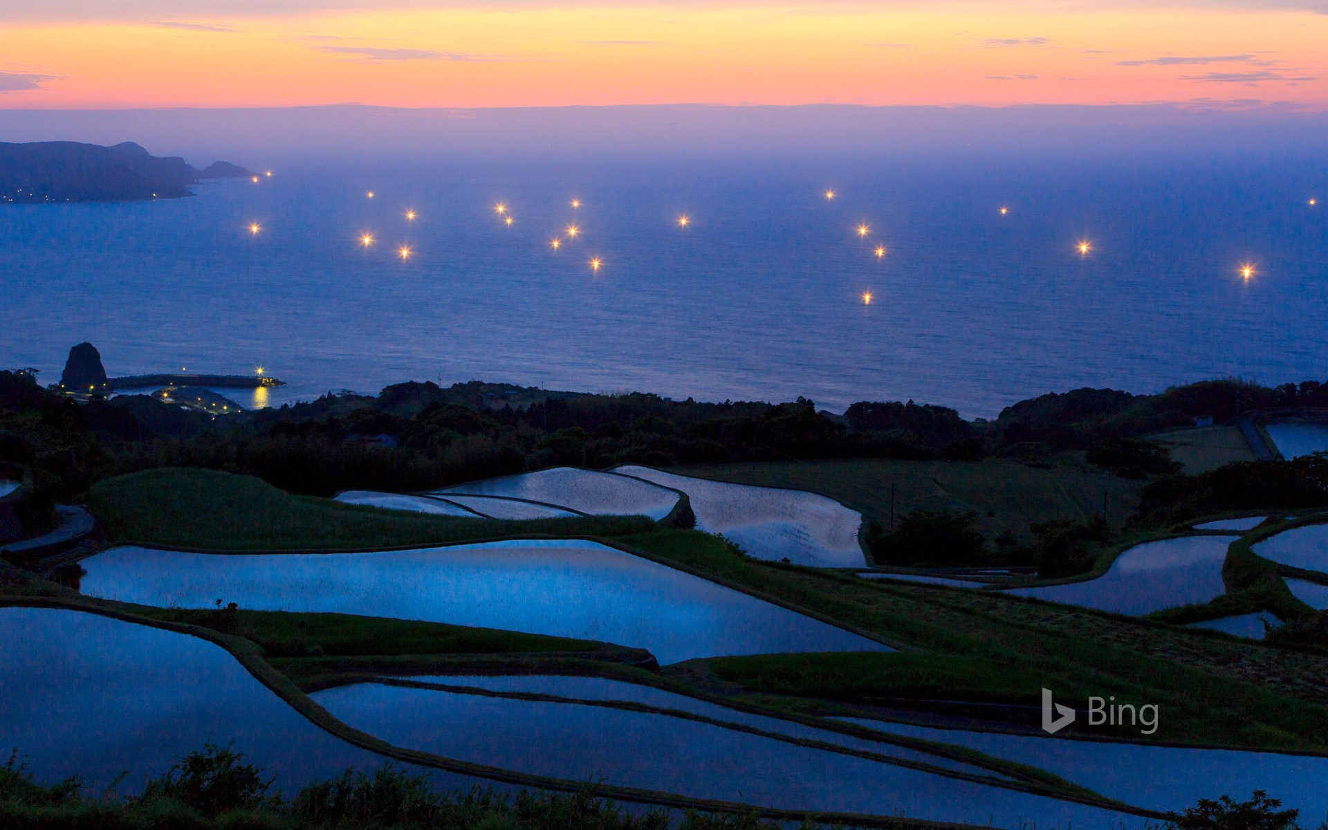 Terraced rice fields and lights of fishing boats, Japan