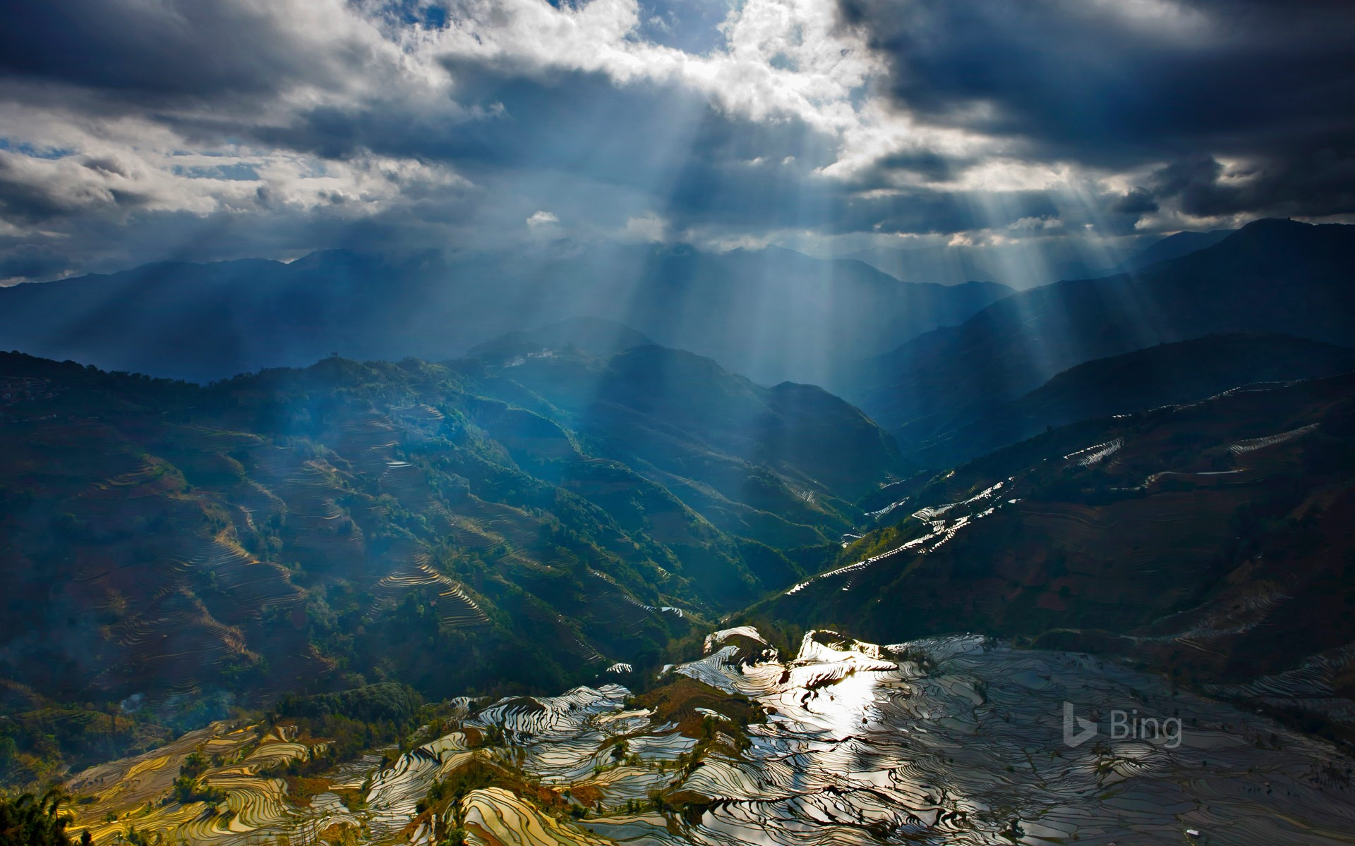 Sunlight reflecting on rice paddy terraces, Yuanyang County, China