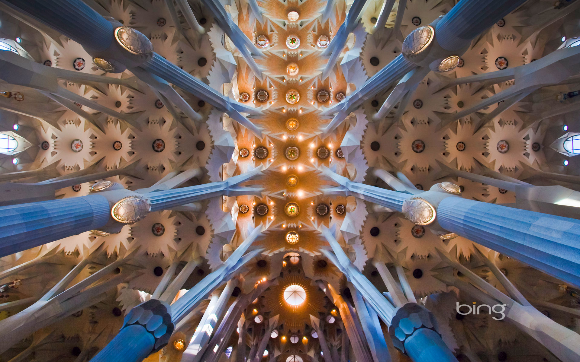 Ceiling of the Sagrada Família in Barcelona, Spain