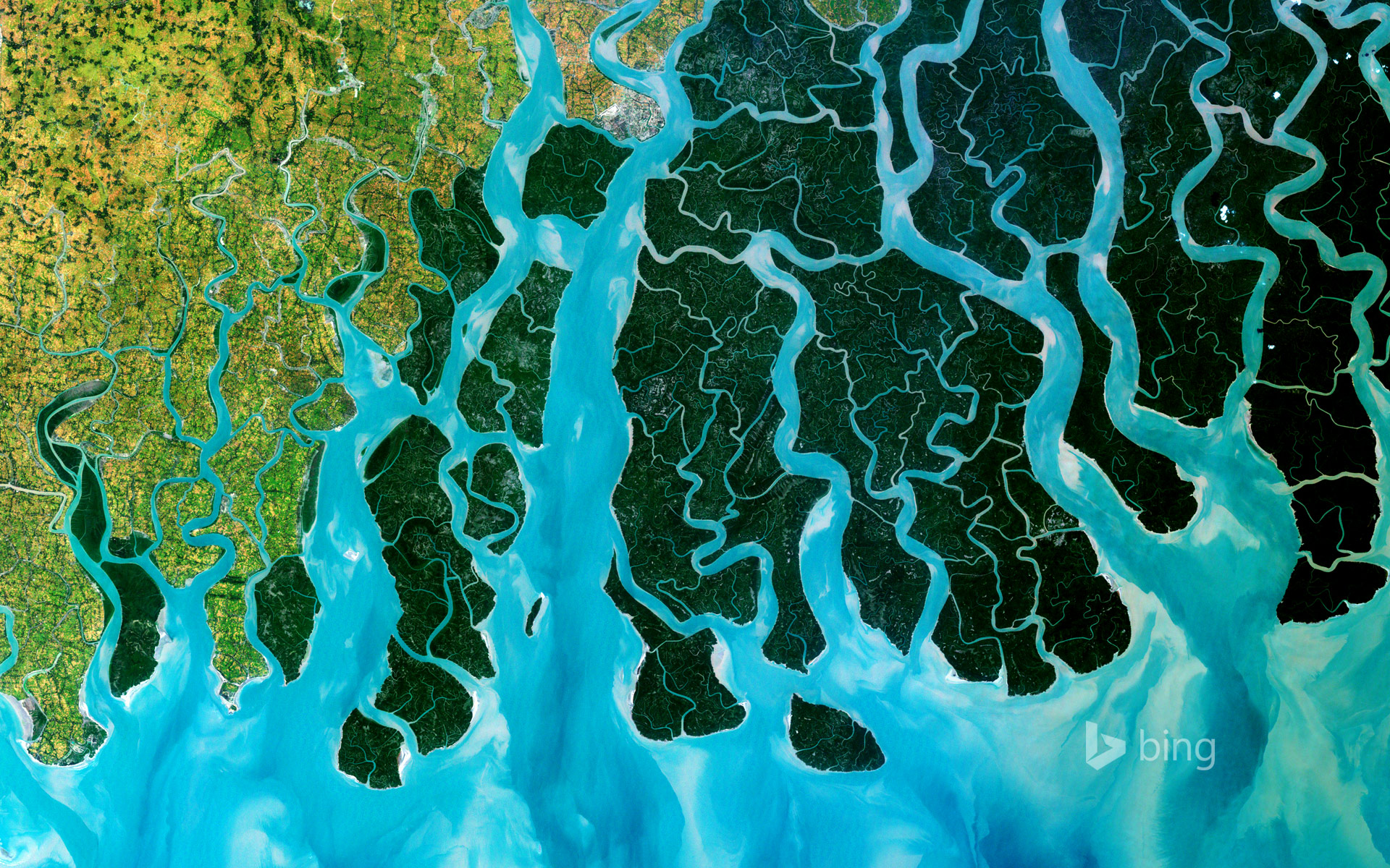 Satellite photo of the Ganges Delta, India and Bangladesh
