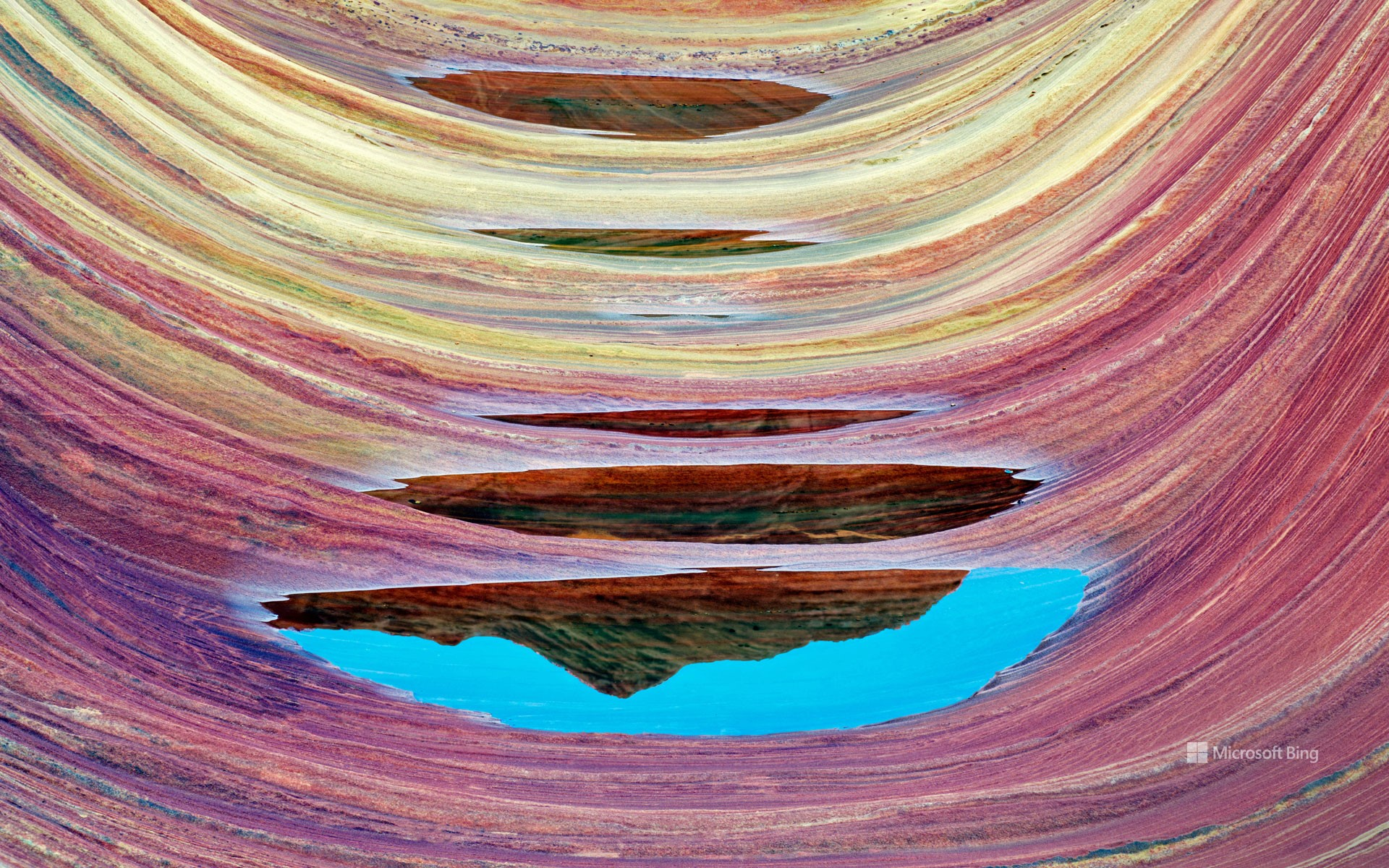 'The Wave' sandstone formation with pools of water in Vermilion Cliffs National Monument, Arizona