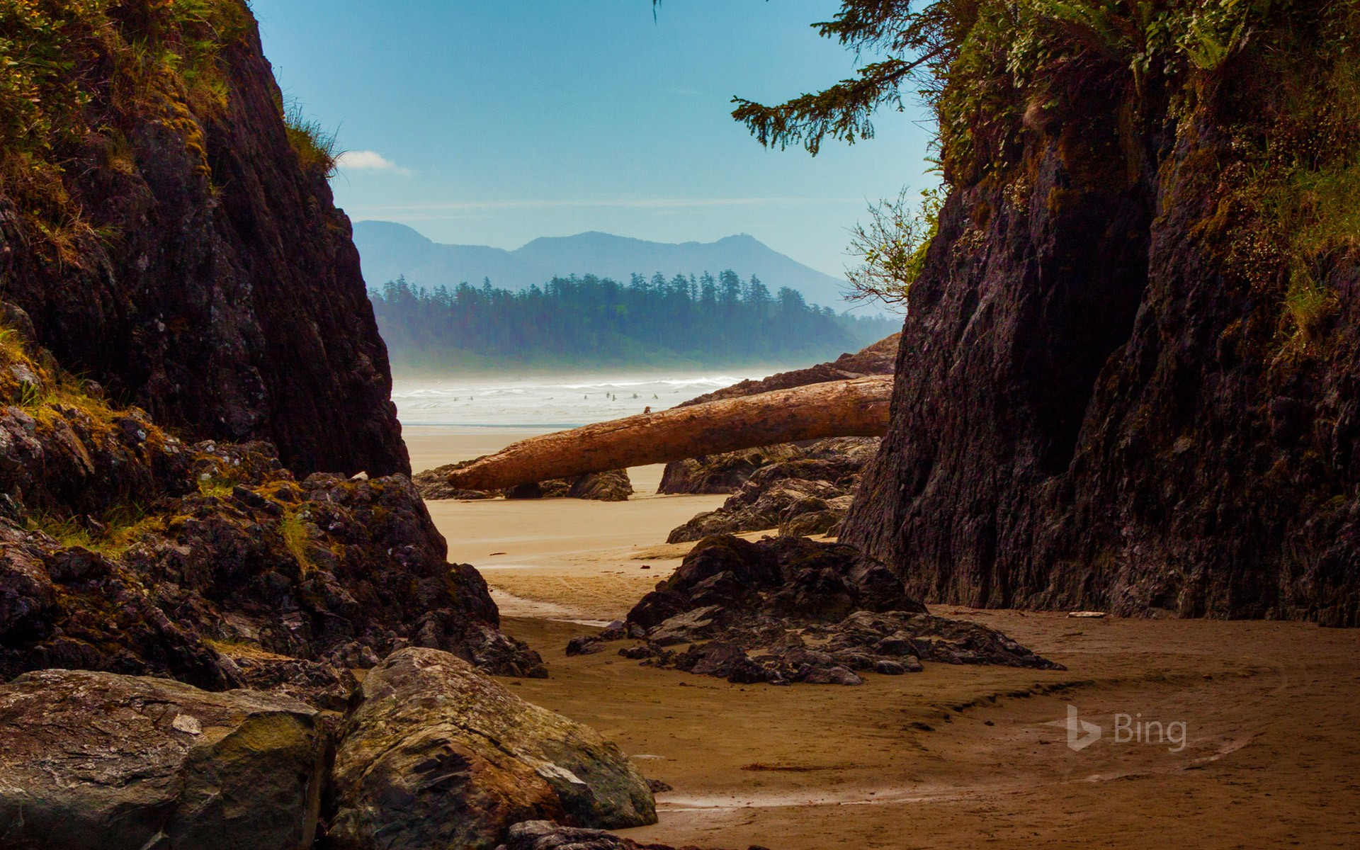 Beach near Tofino, Vancouver Island, Canada (© Cavan Images/Offset)