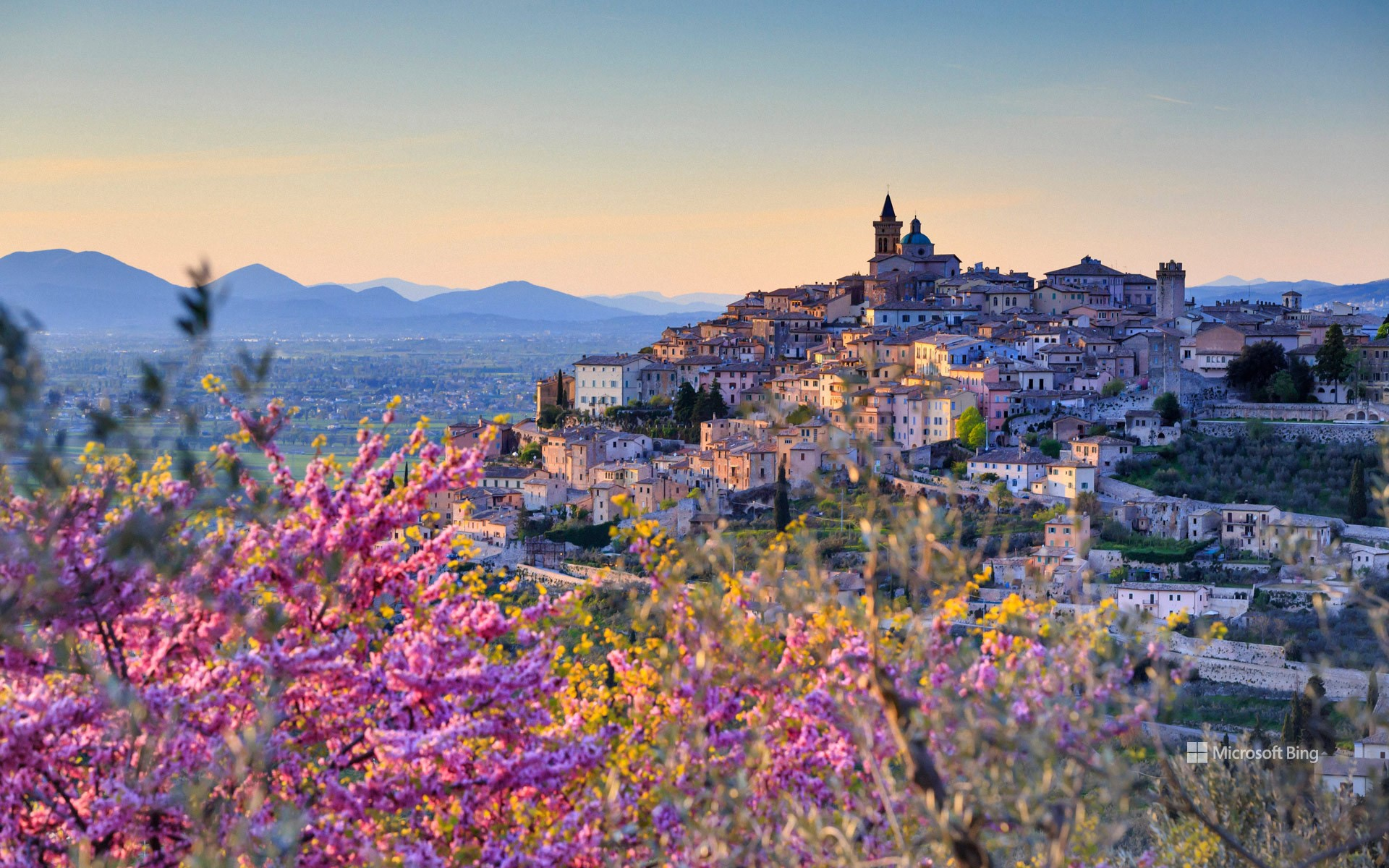 Trevi, Umbria, Italy, with almond flowers in the foreground