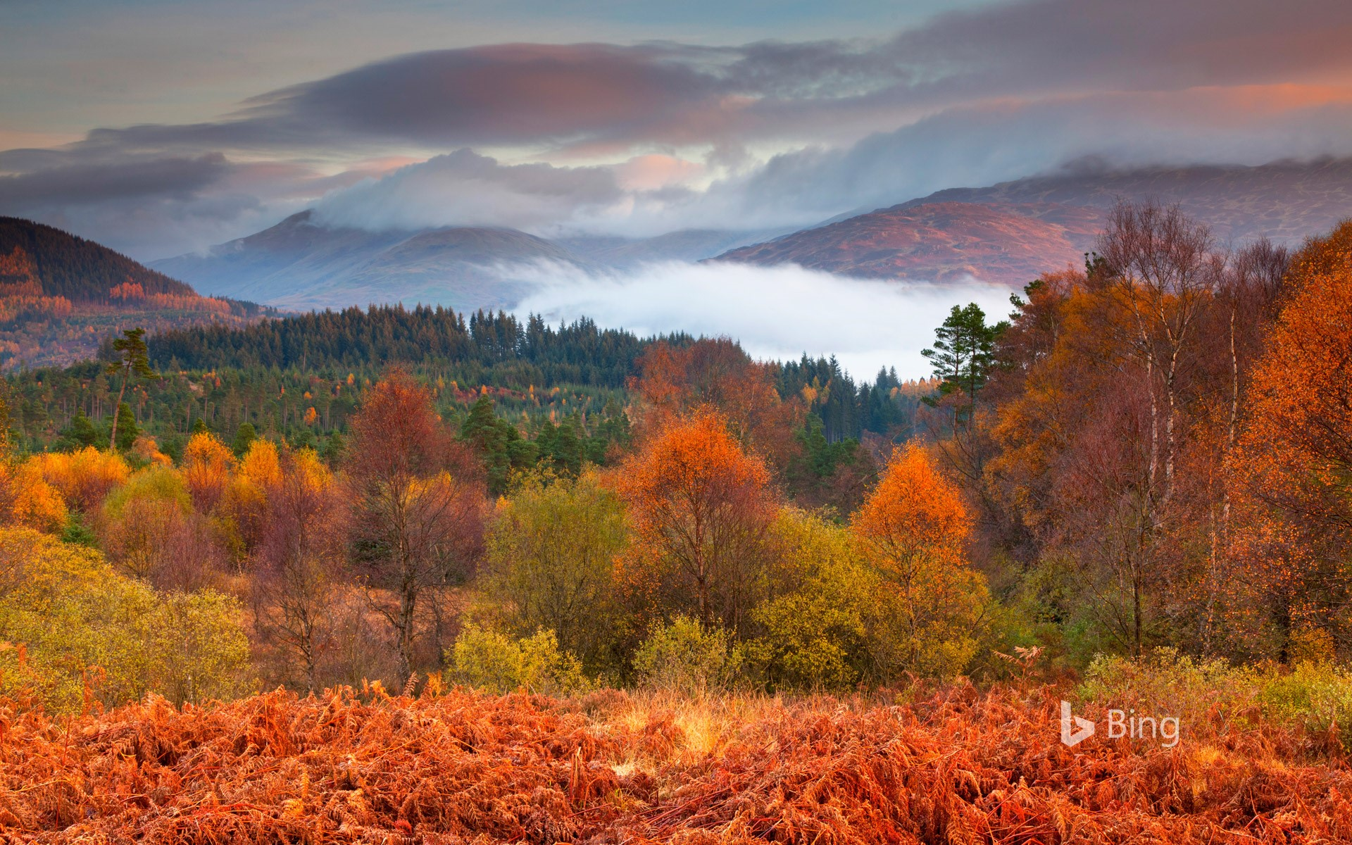 The Trossachs National Park in autumn, Stirling, Scotland
