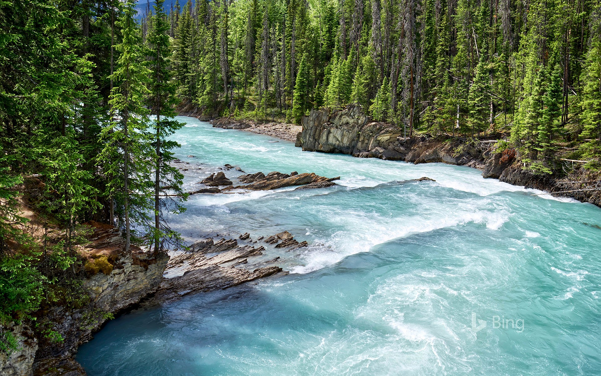 Glacial turquoise water of Kicking Horse River, Yoho National Park, B.C.