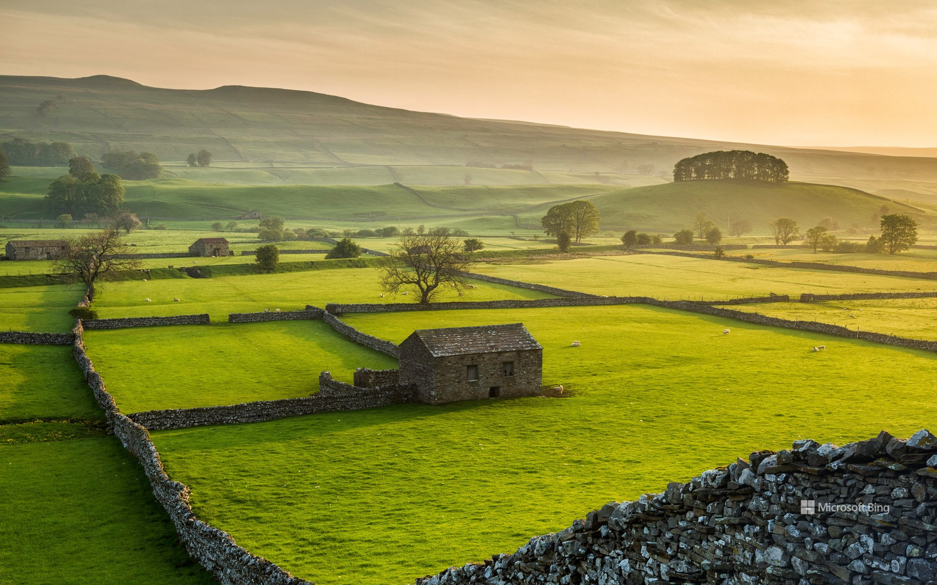 Wensleydale, Yorkshire Dales National Park, North Yorkshire, England