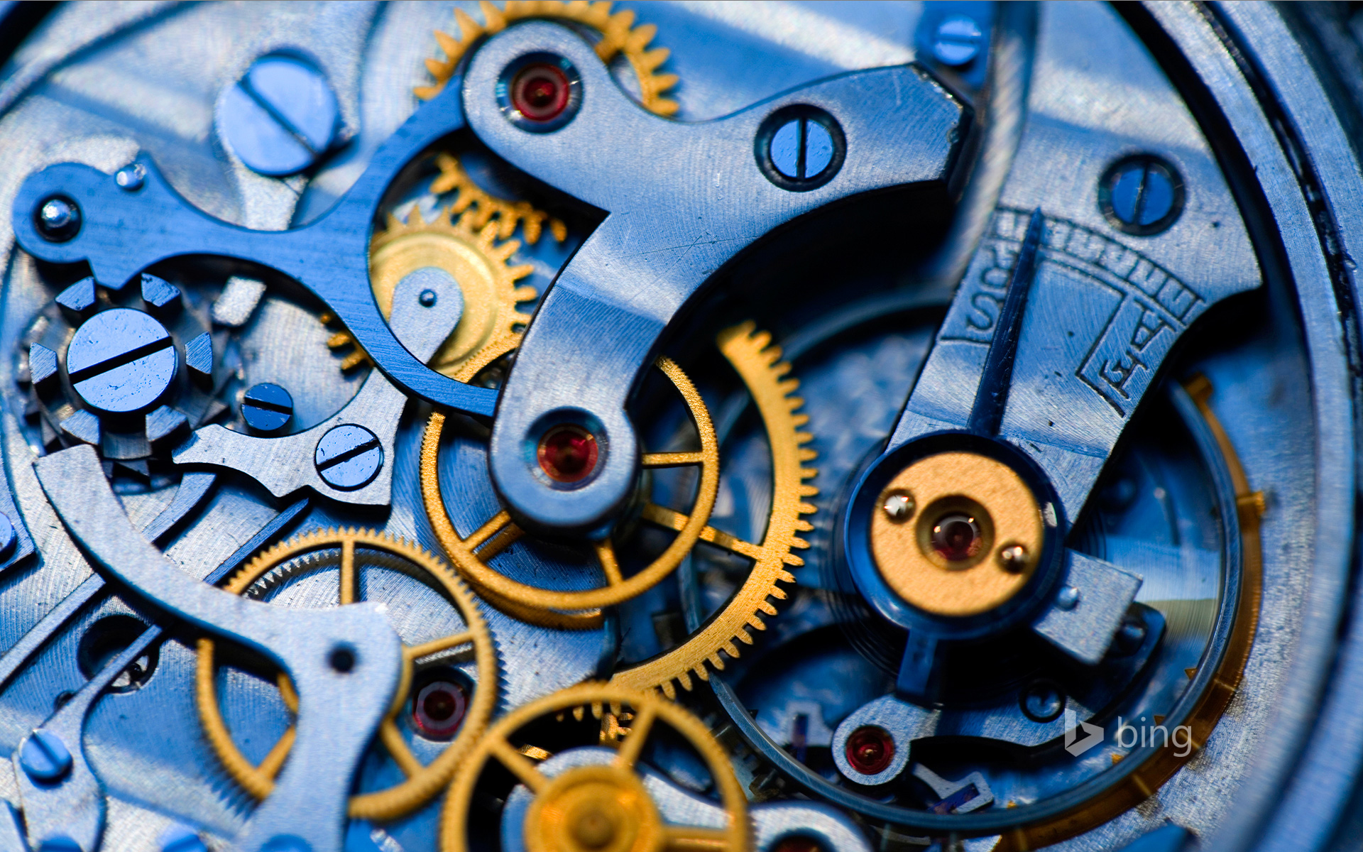 Gears and rubies inside an antique watch