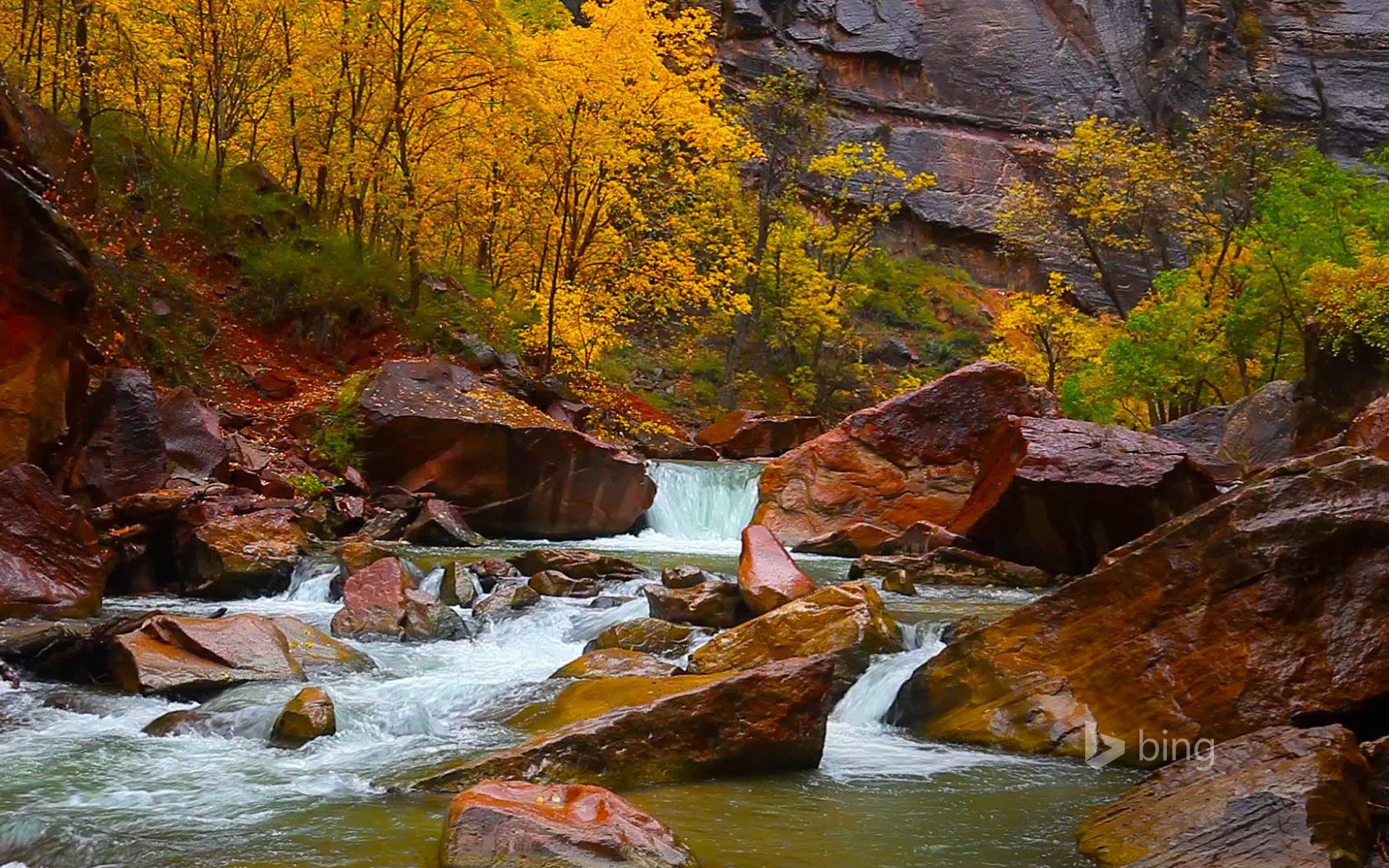 North Fork of the Virgin River, Zion Canyon, Utah