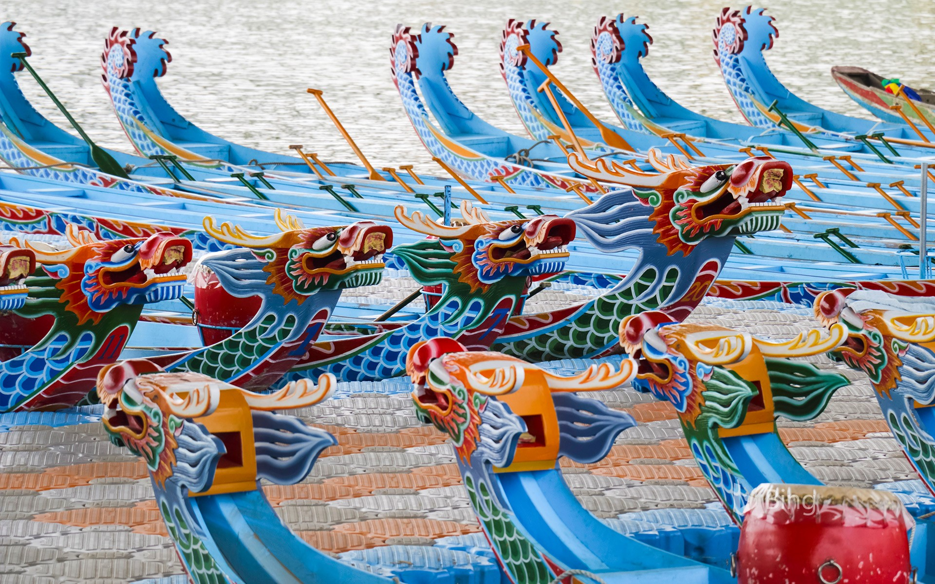 【Dragon Boat Today】
